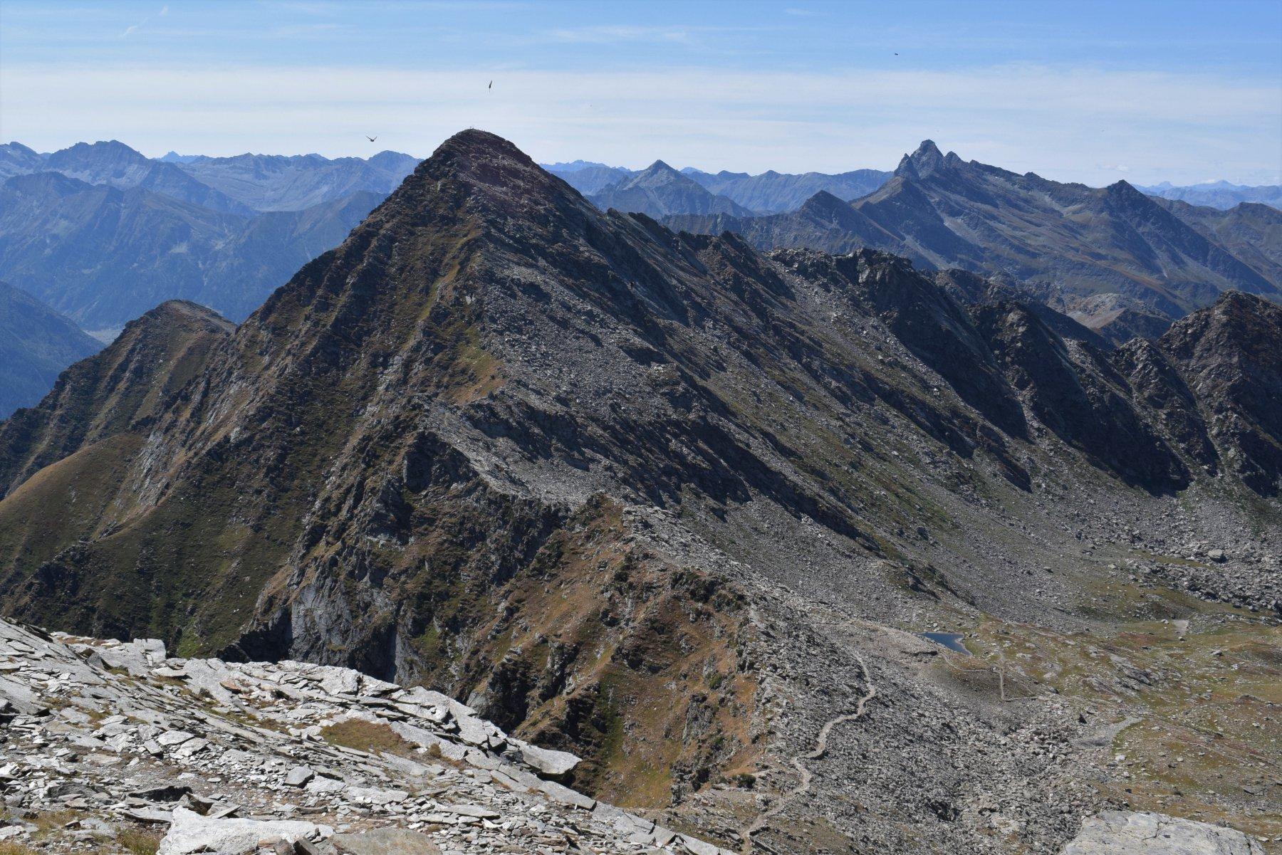 la cresta di salita al Cornour, dalla Cialancia