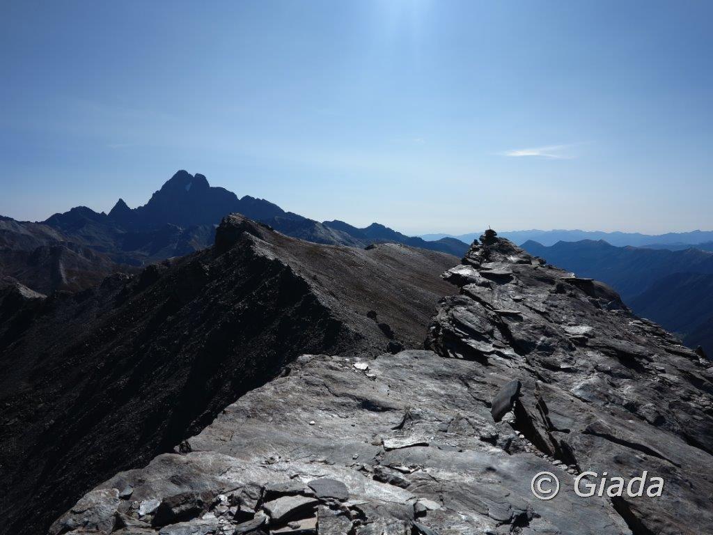 La punta e dietro la Punta  dell'Alp e il Monviso