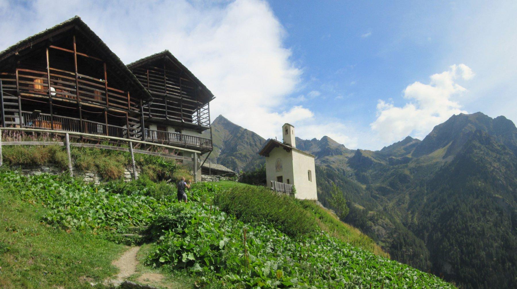 Arrivo ad Alpenzù