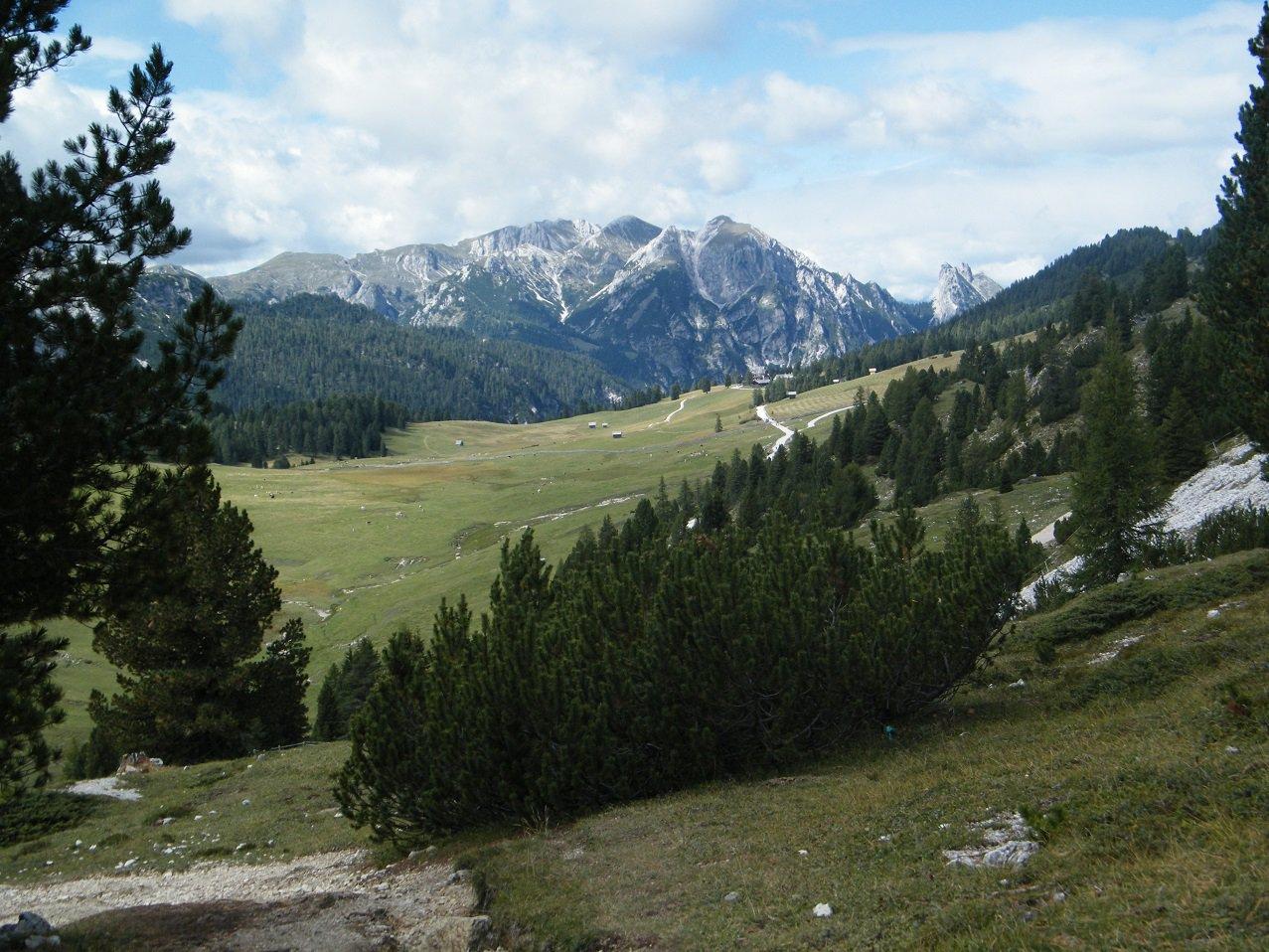 I pascoli di Prato Piazza, scendendo verso il Rif. Vallandro.