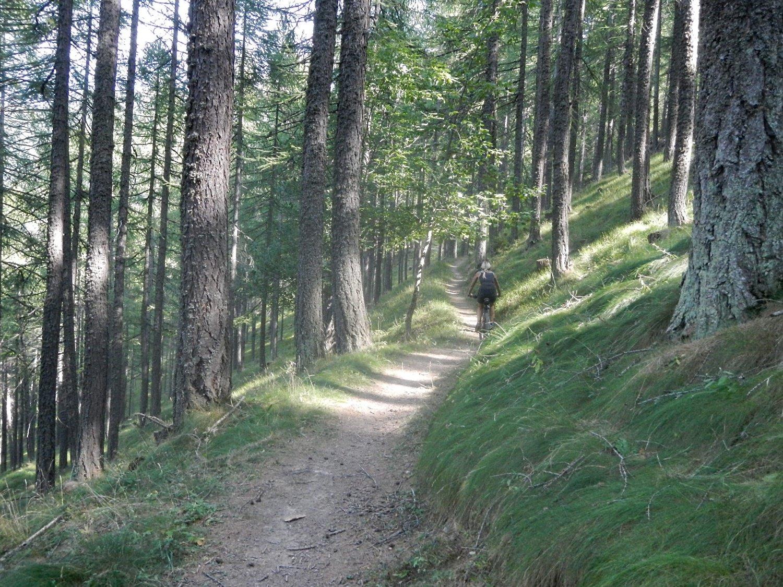 bel sentiero a mezza costa