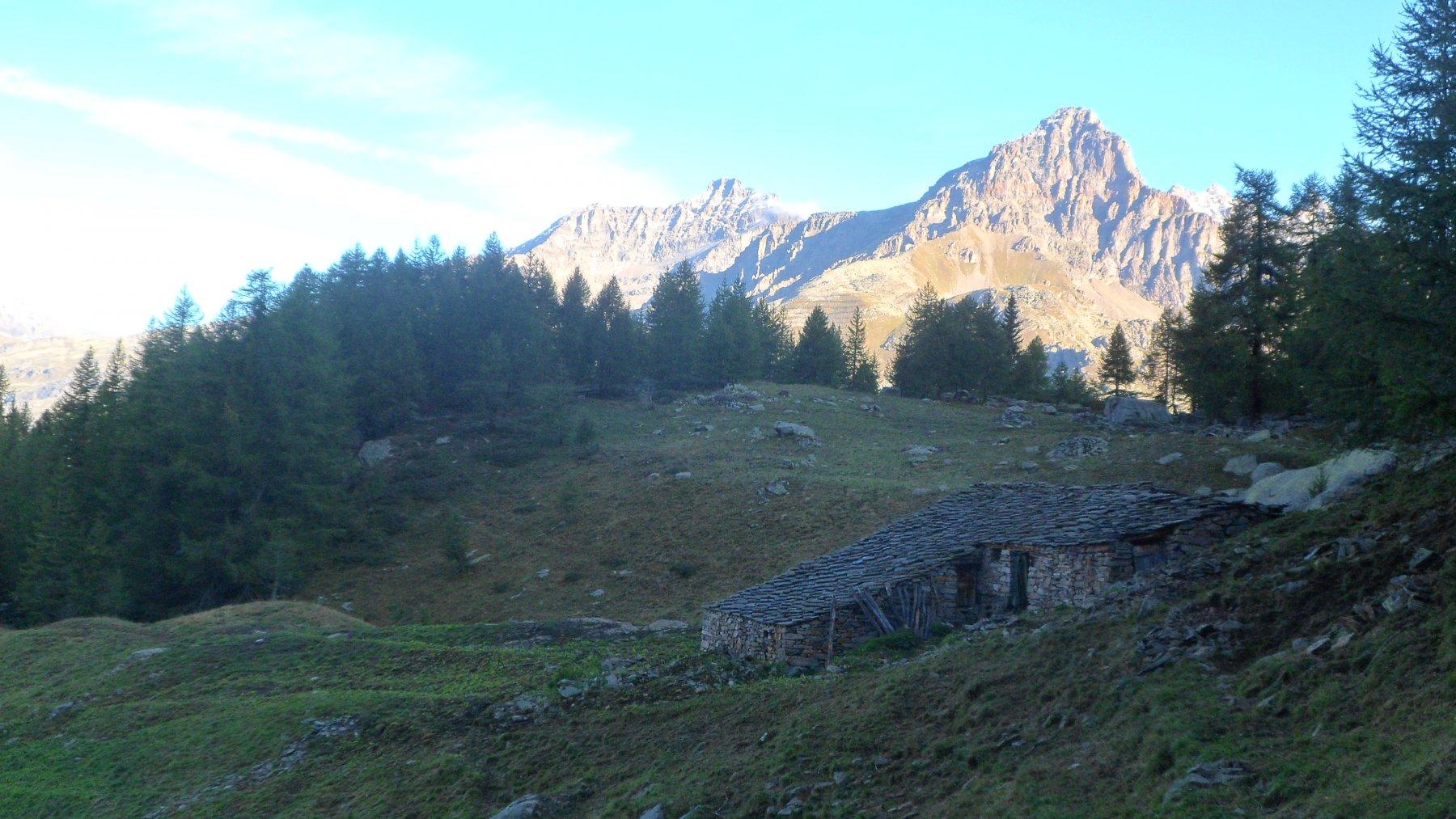 Alpe Gran Ciavana