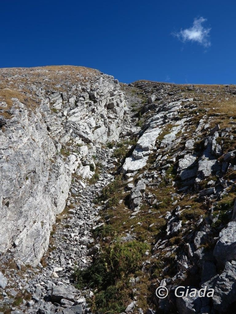 La lunga spaccatura sul pendio ovest della Bozano