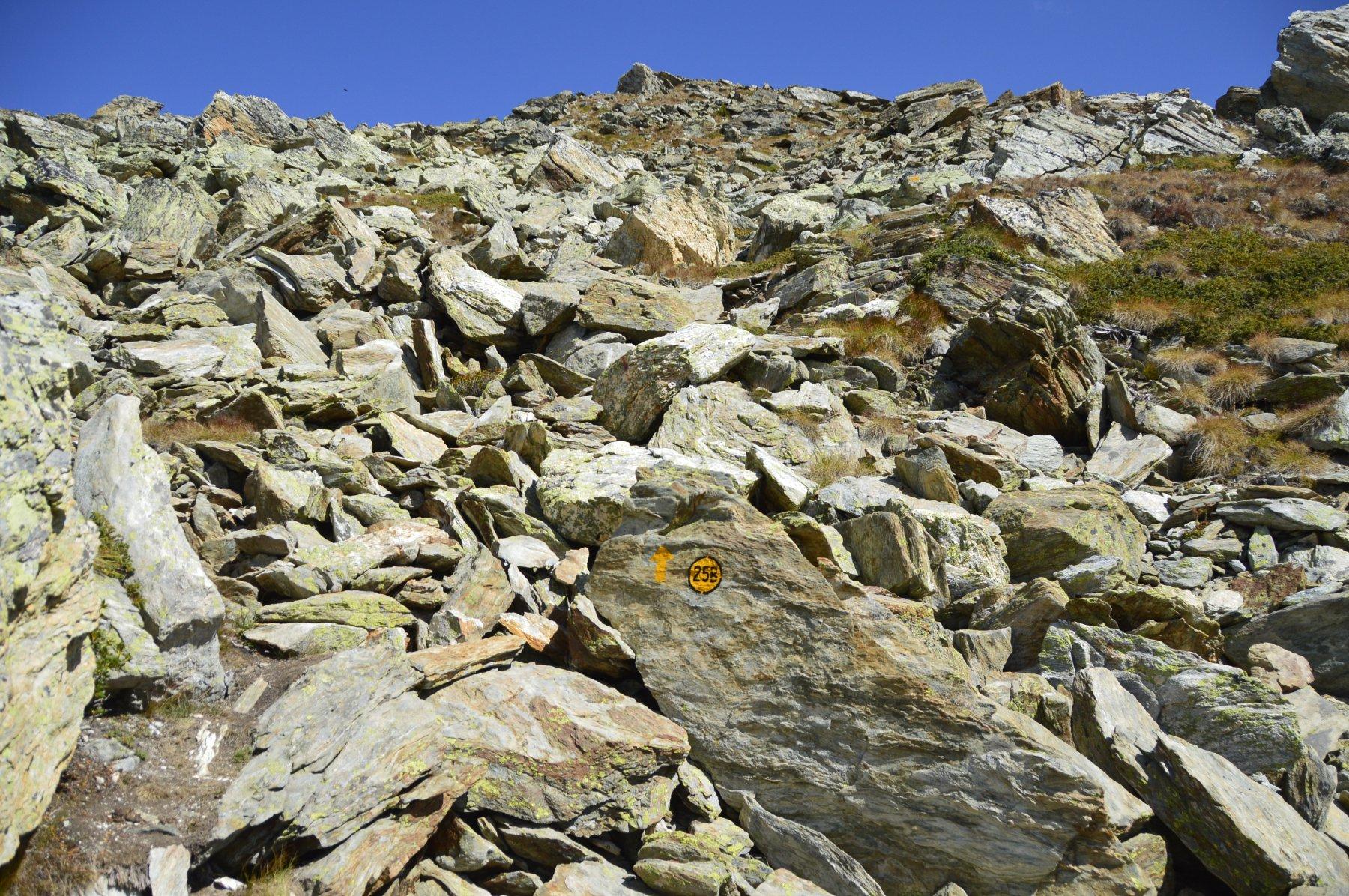 Il breve tratto su pietraia