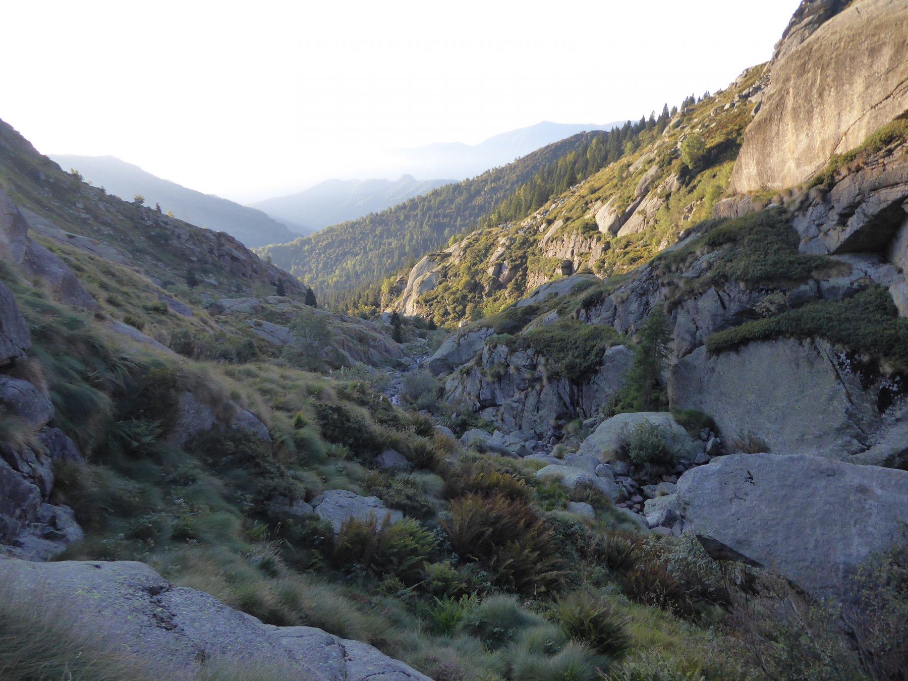 Salita lungo il canale del Rio Boiretto
