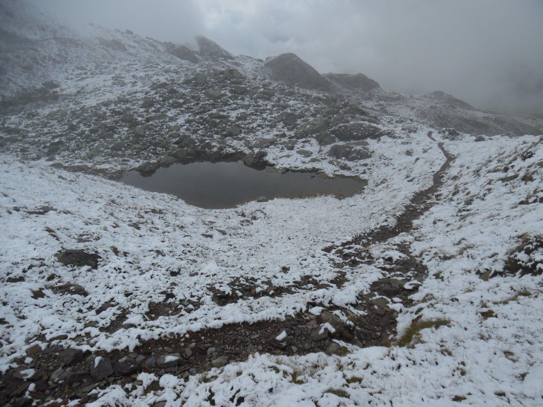 Tra la Baita Lago Cermello e la cresta