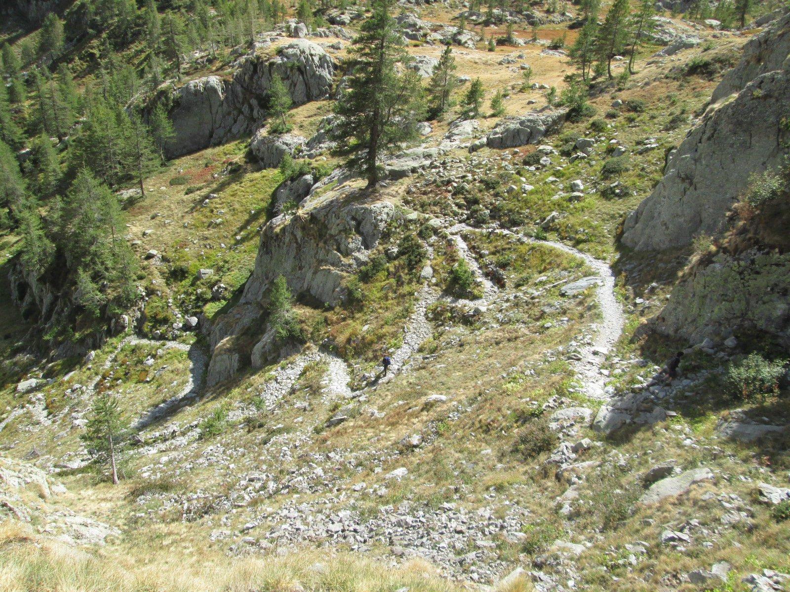 il bel sentiero che dal rifugio scende a valle