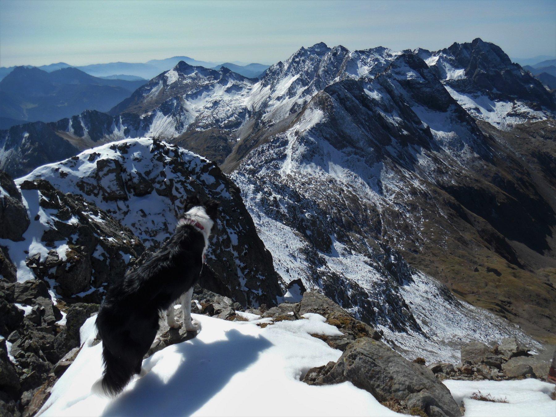 Recastello, Gleno e Tre Confini dal Torena 2911 m
