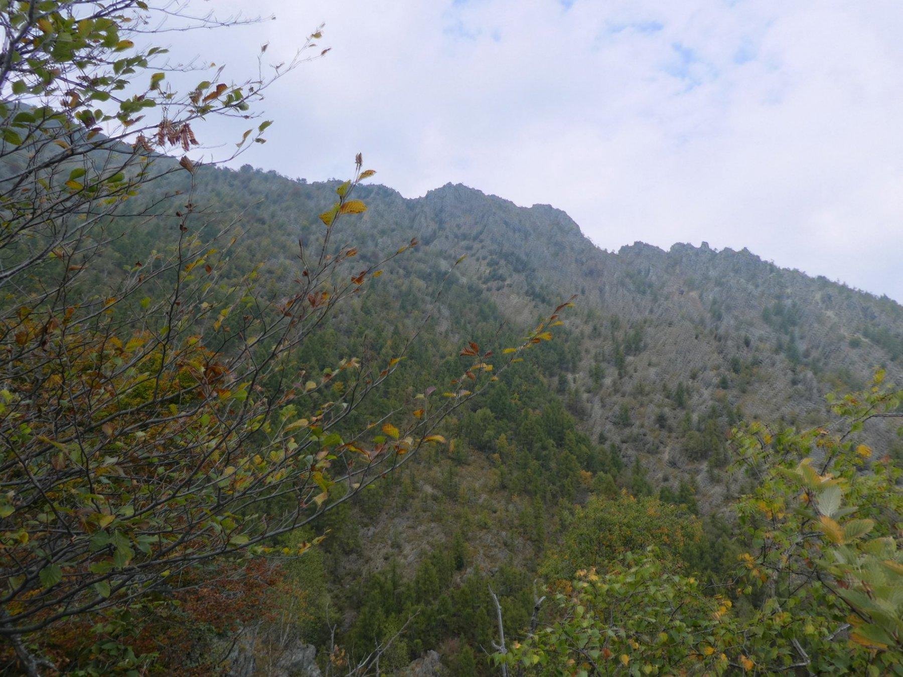 cresta delle Lunelle riprese in discesa
