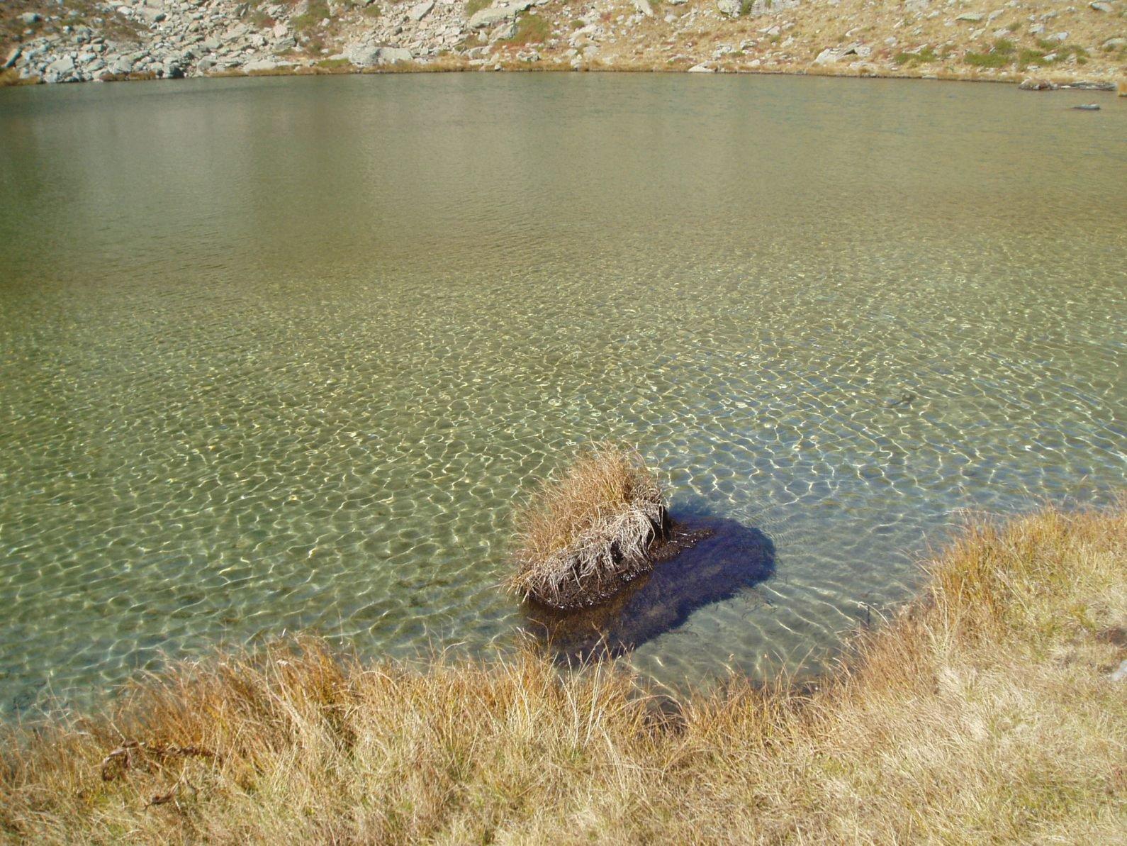 Trasparenza dell'acqua del Lago Raty.