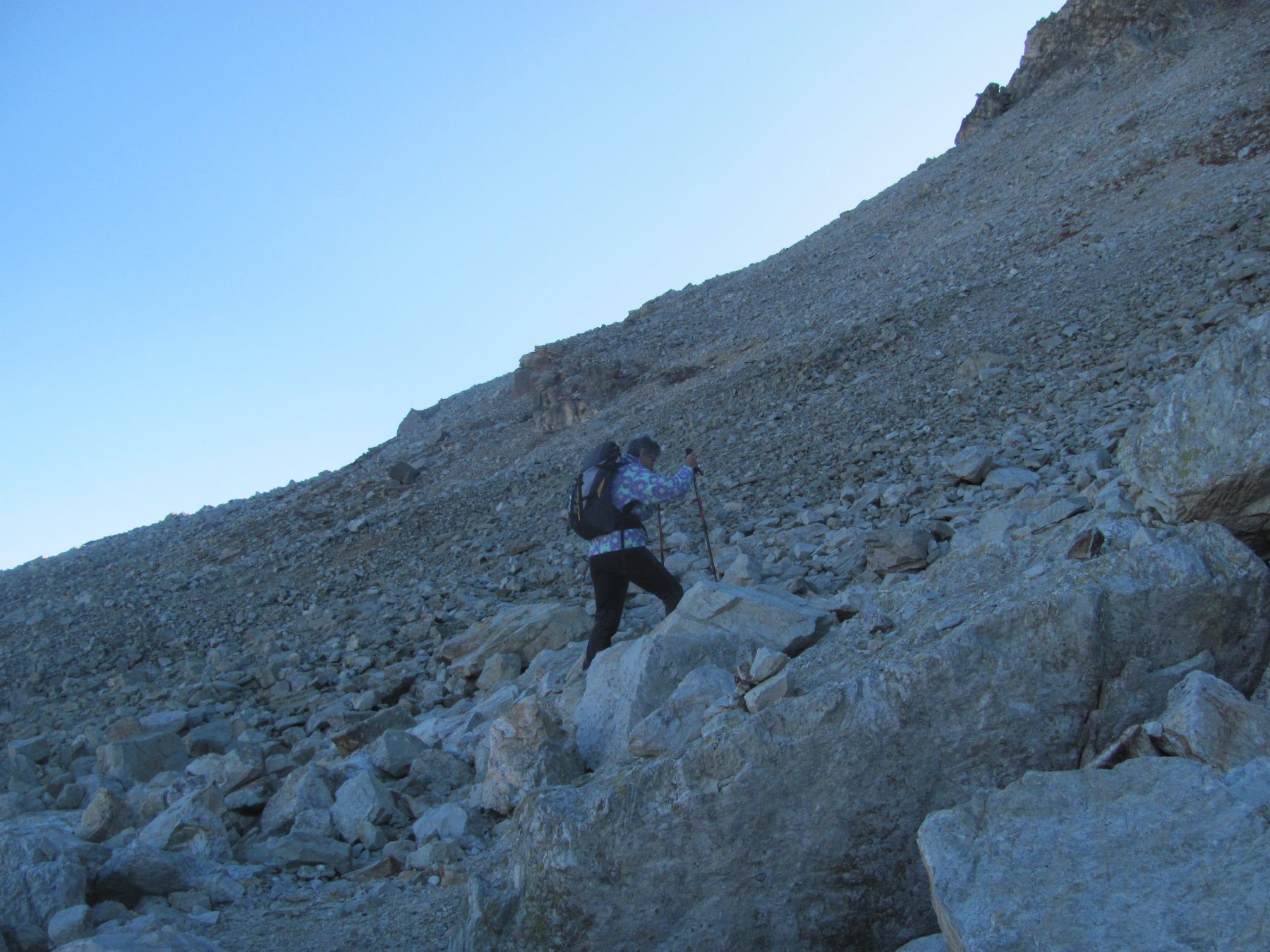 nella pietraia del versante nord del Pelvo
