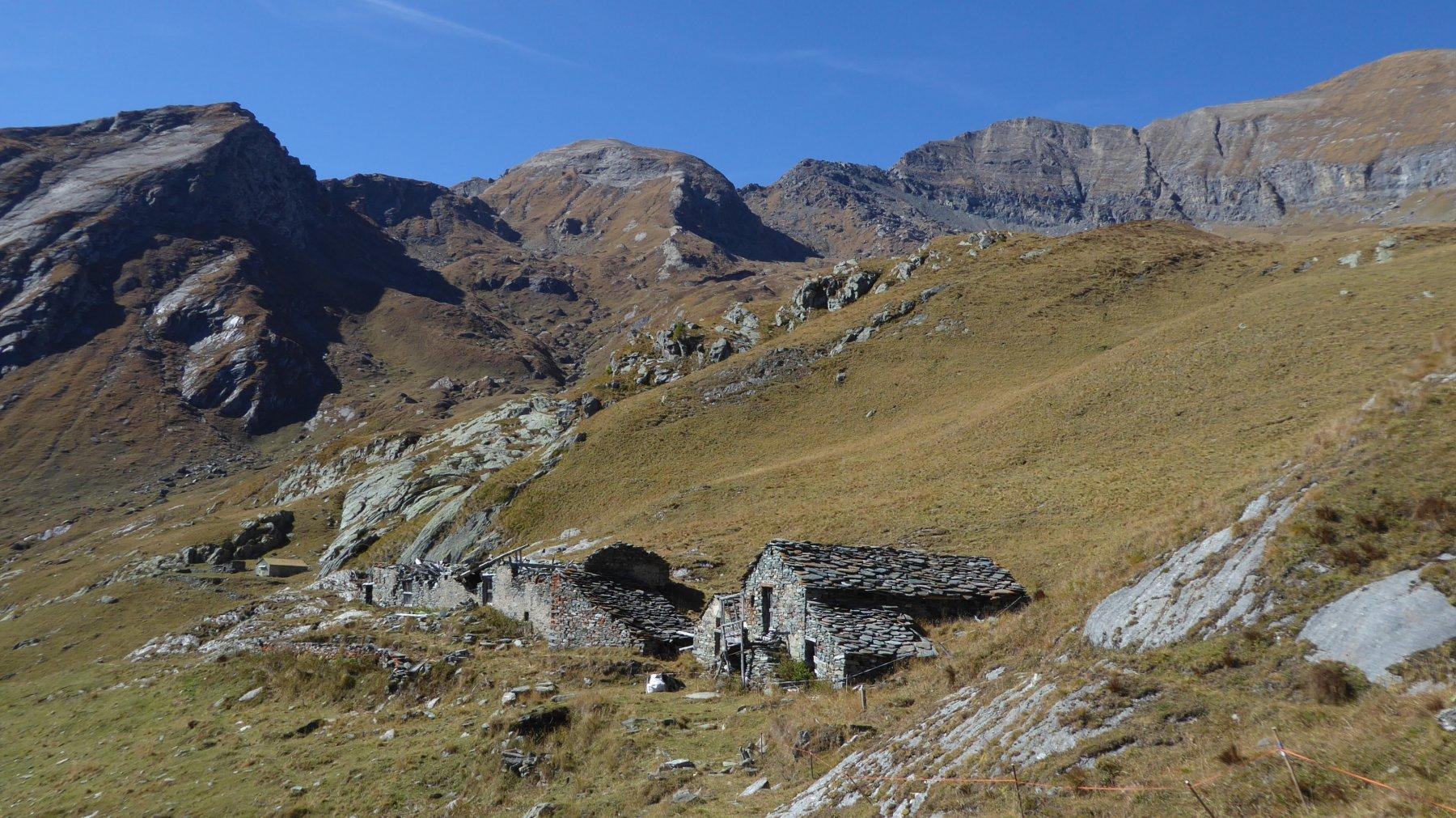 Alpe Becco Grande con sfondo la Rosa dei Banchi