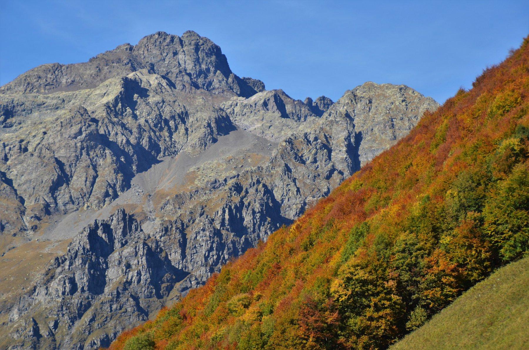Redorta e l'autunno sulle foglie