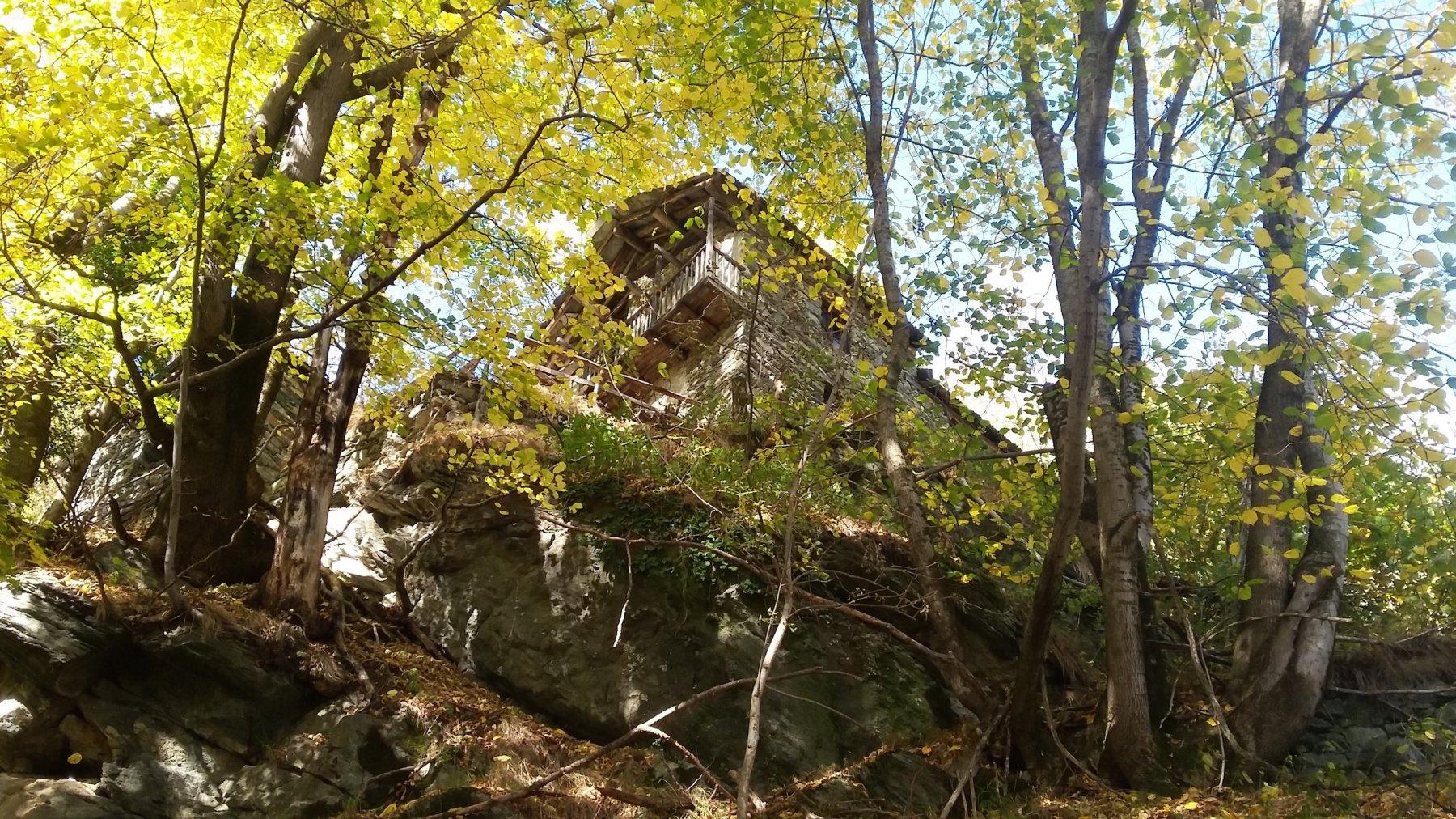 c'è una casa nel bosco...