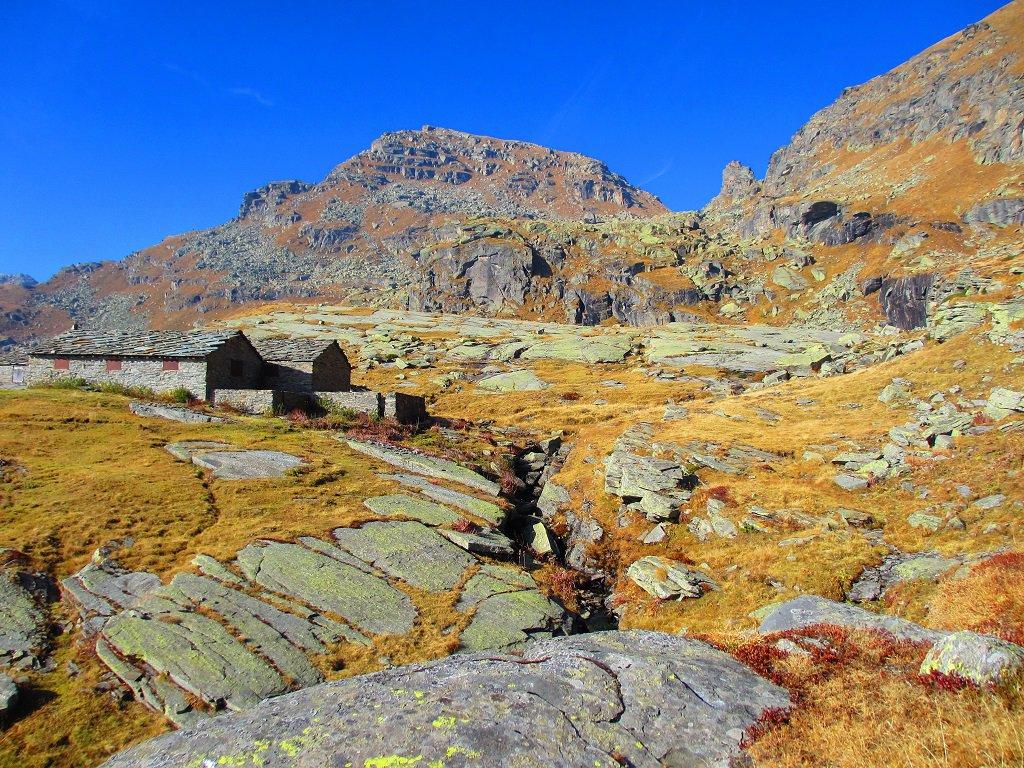Alpe Pian di Lee,in alto le pendici basse del versante sud della Giardonera, e il Torrione al colle Nora