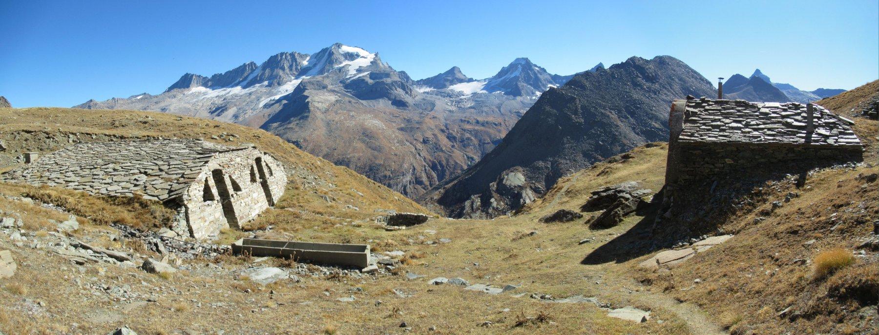 Alpe Pian Borgno