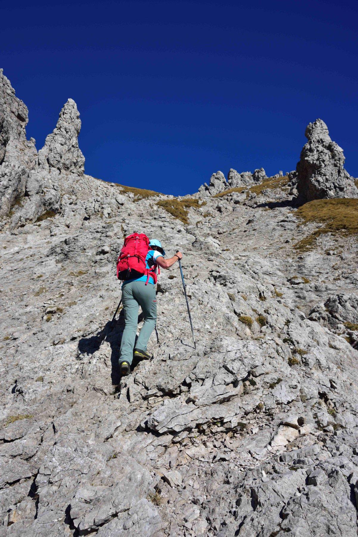 La costola rocciosa che si risale per arrivare in cresta.