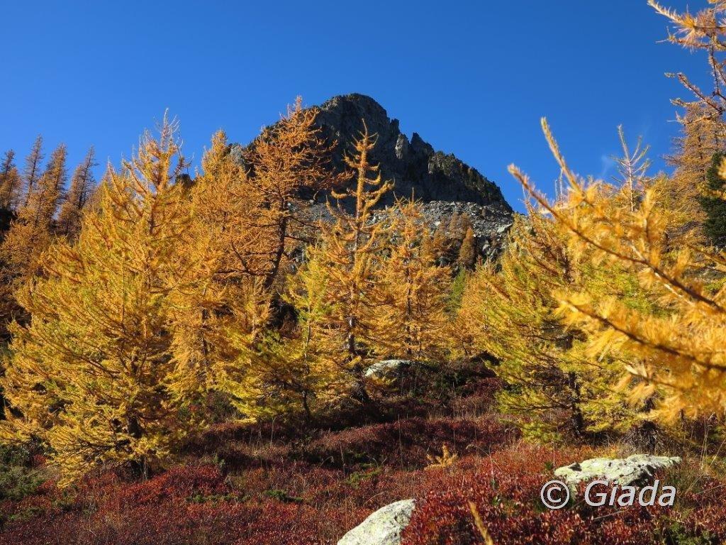 Il Cayre Archas tra i magici colori autunnali