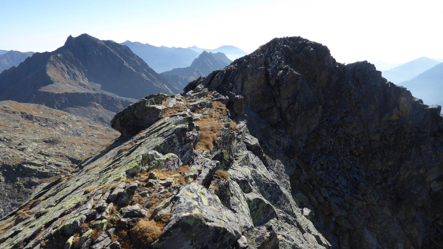 La vetta di quota 2836, vista da nord