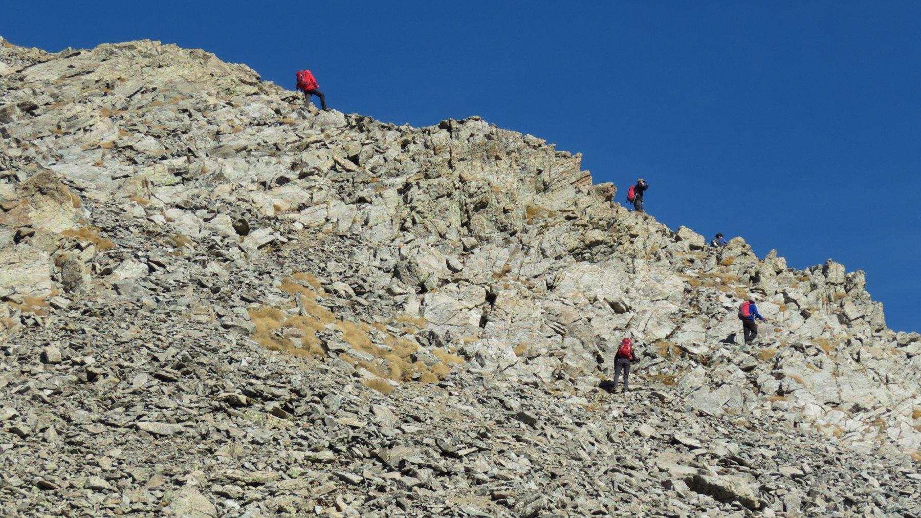 salendo lungo la cresta sommitale verso la Cima Sud della Viglino