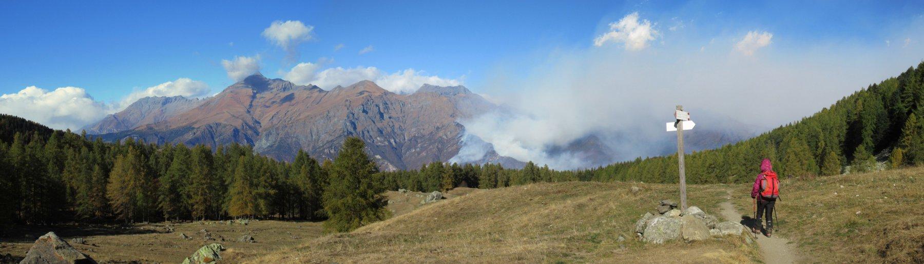 Brucia la Val Susa ...
