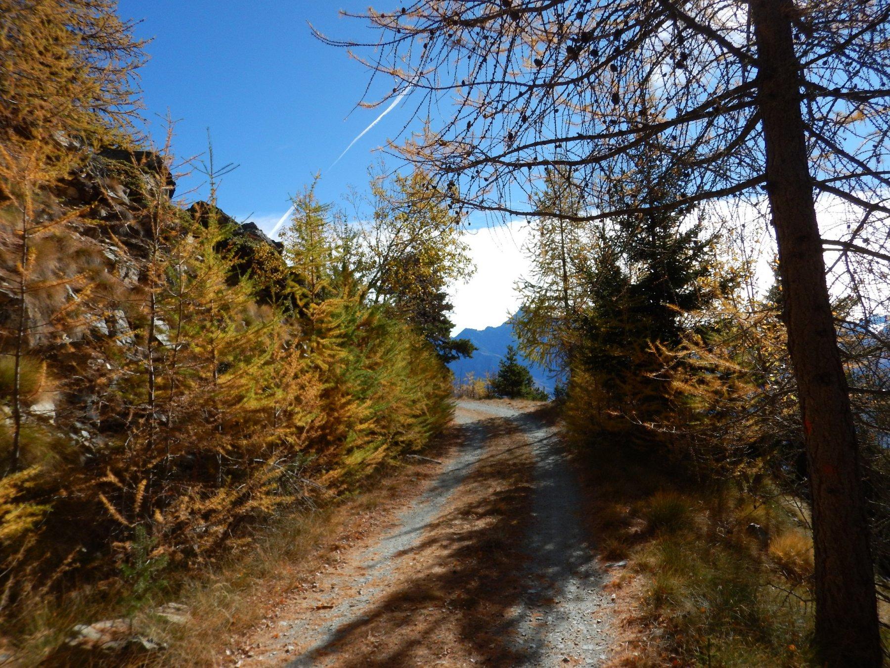 Viou (Alpe di) da Veynes 2017-10-26