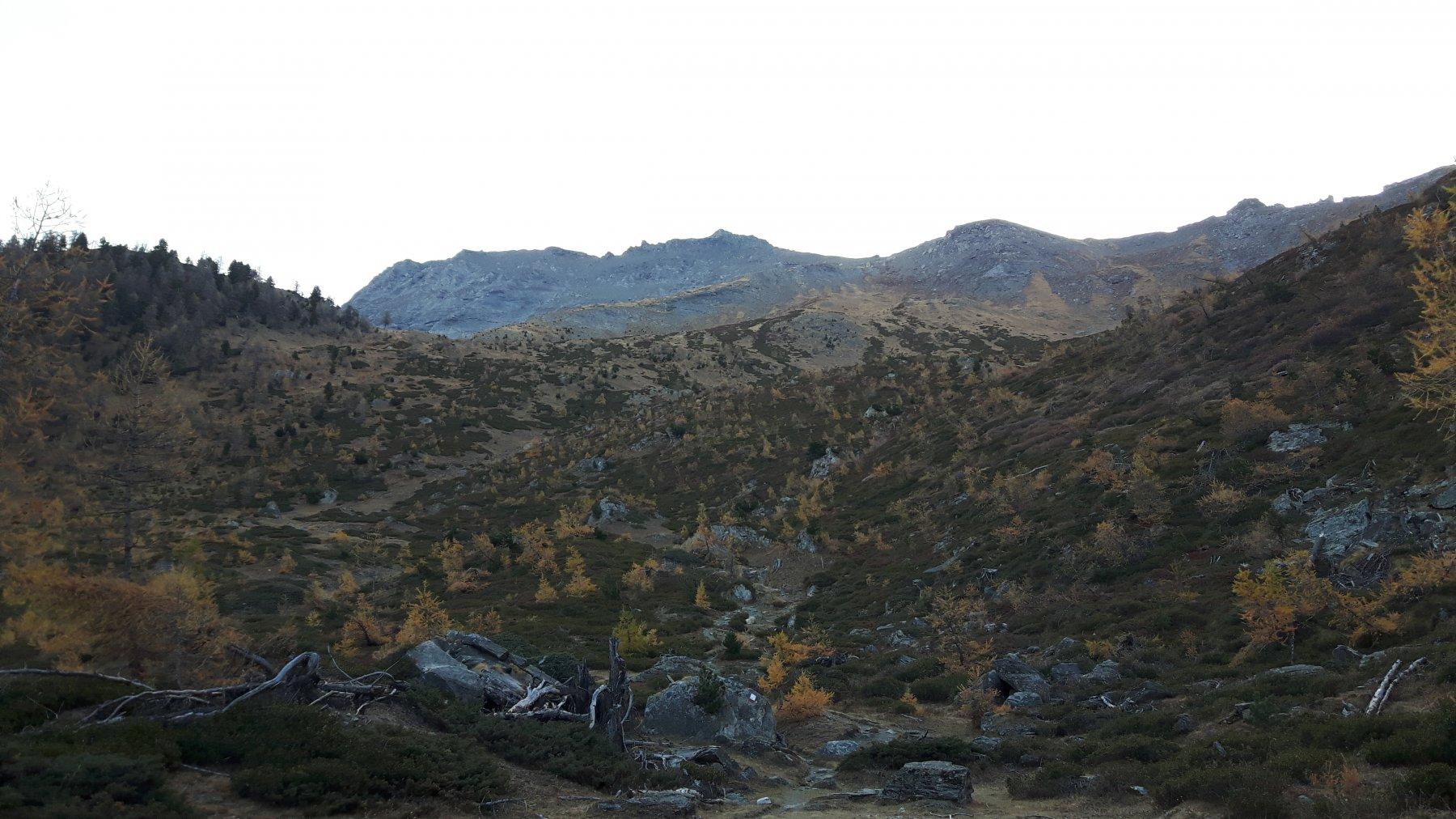 La cima dalle Bergerie Prà Damont.