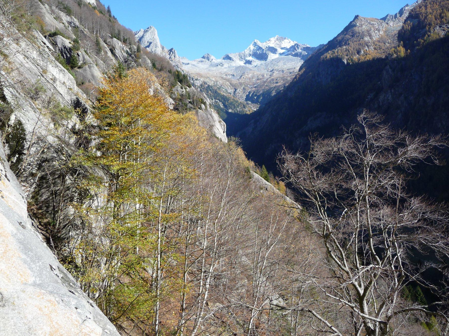 Monte Disgrazia e Val di Mello dalla via