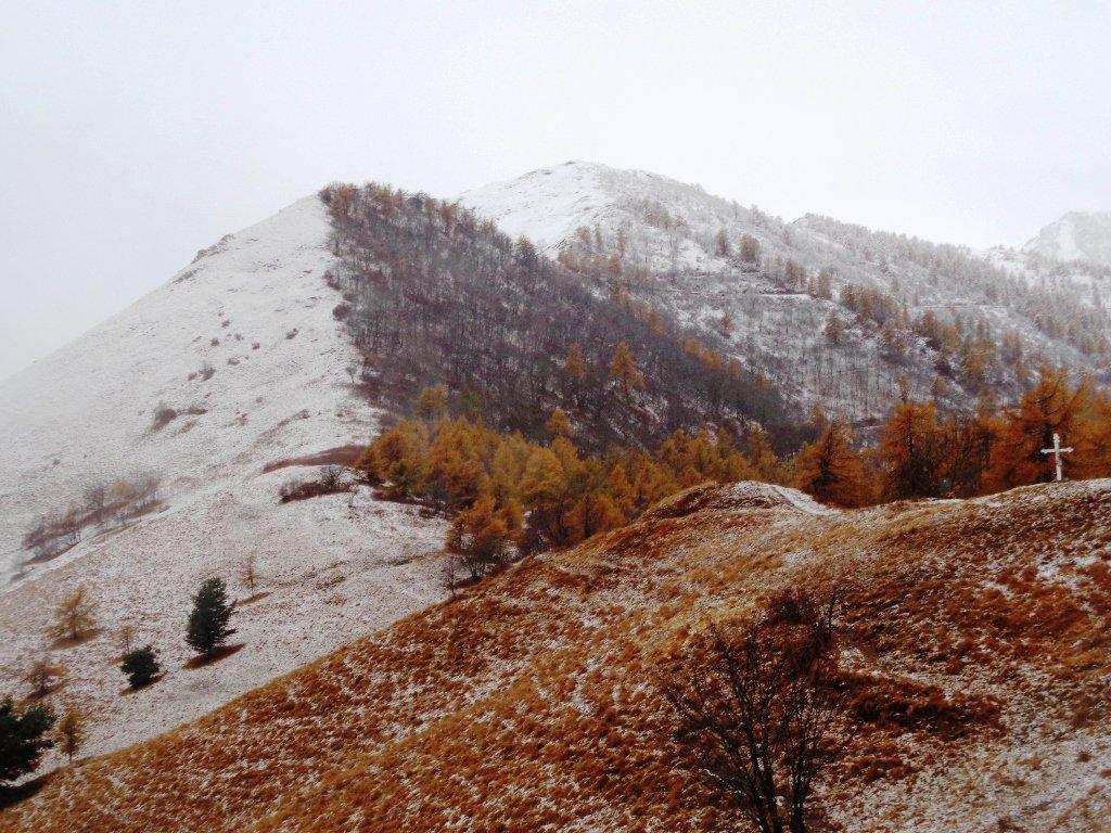 Birrone (Monte) da Sant'Anna di Roccabruna 2017-11-05