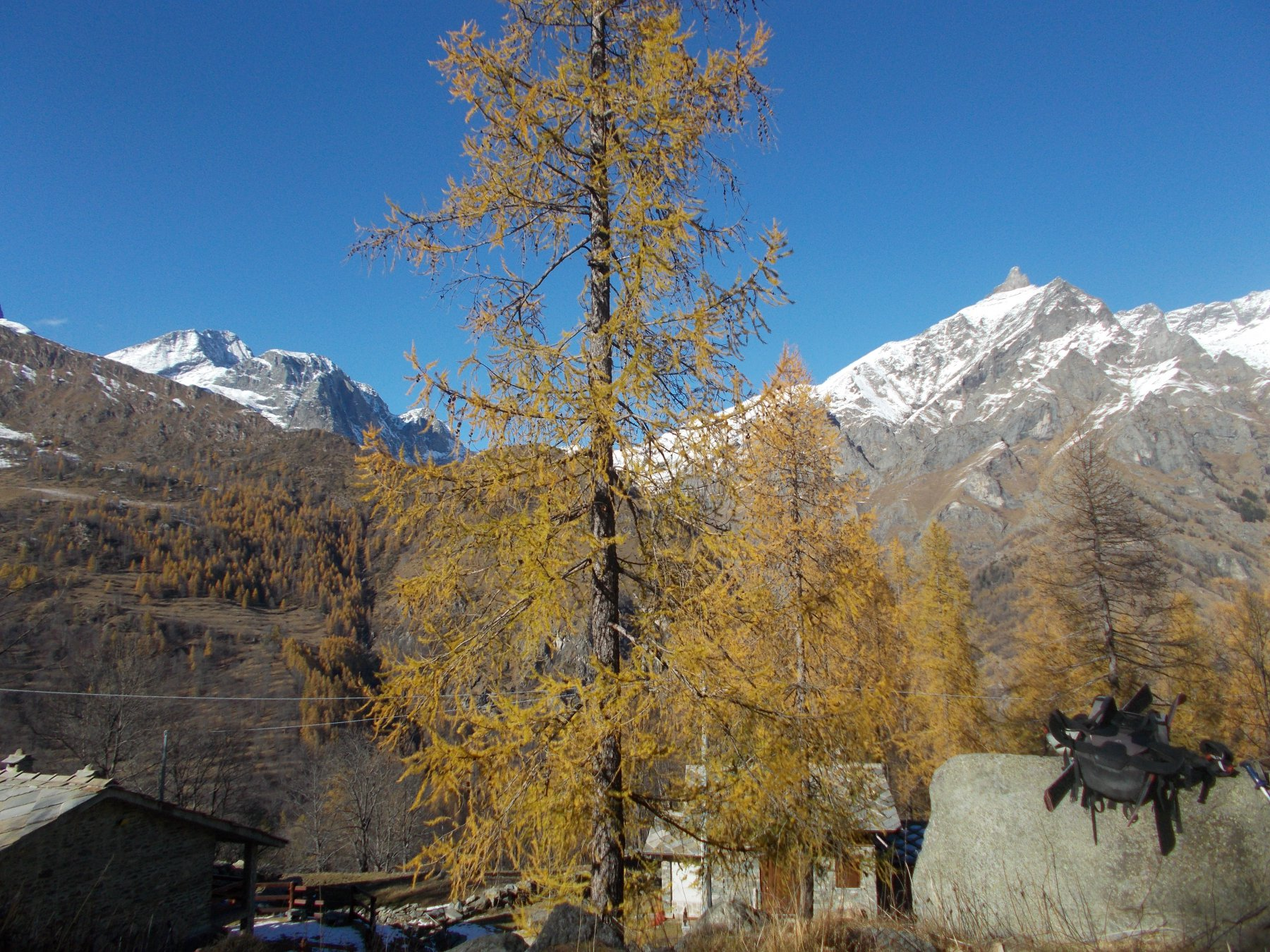 pieno autunno all'alpe Traverset..