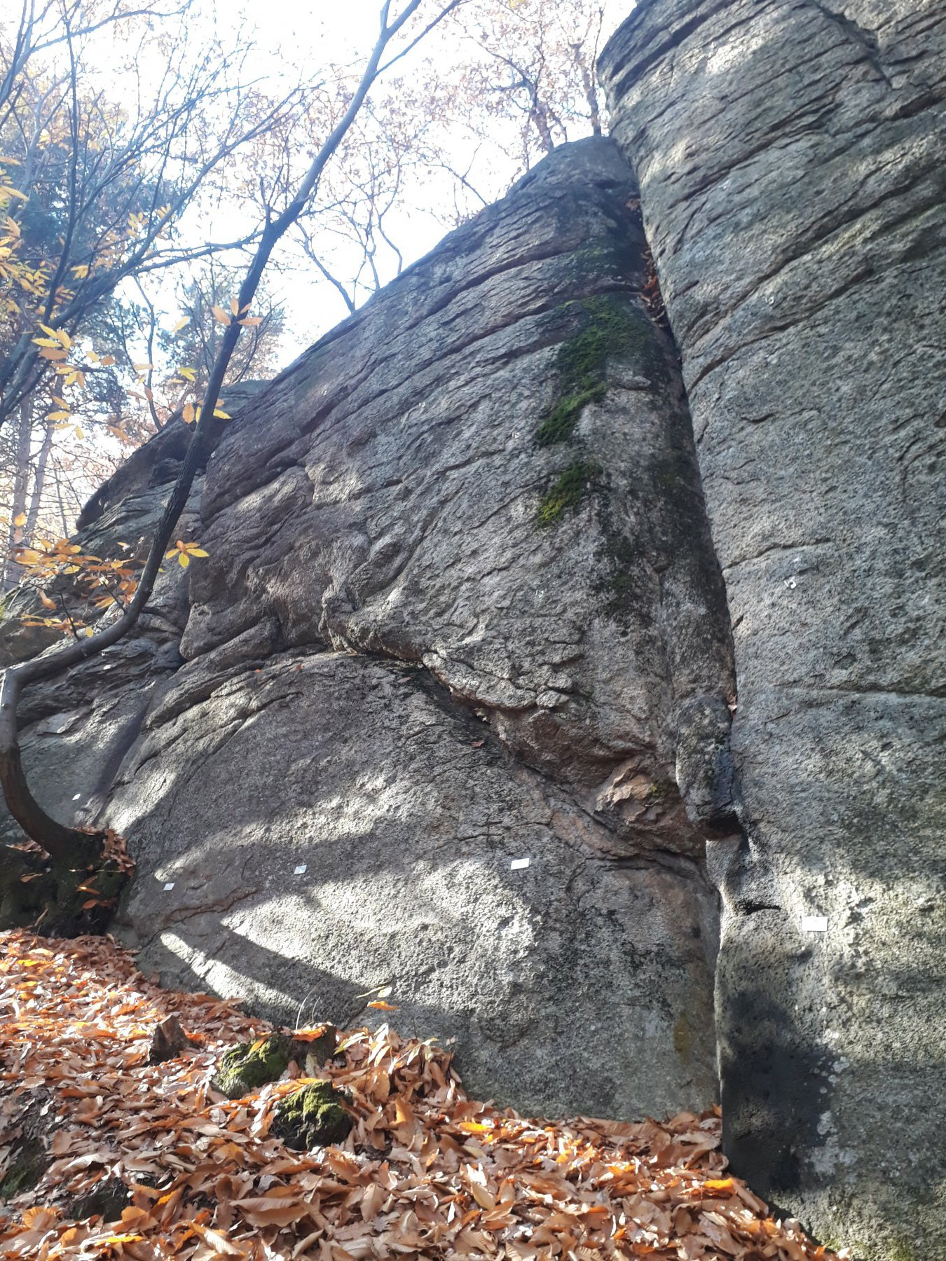 Muretto (Monte) - Falesia 2017-11-16
