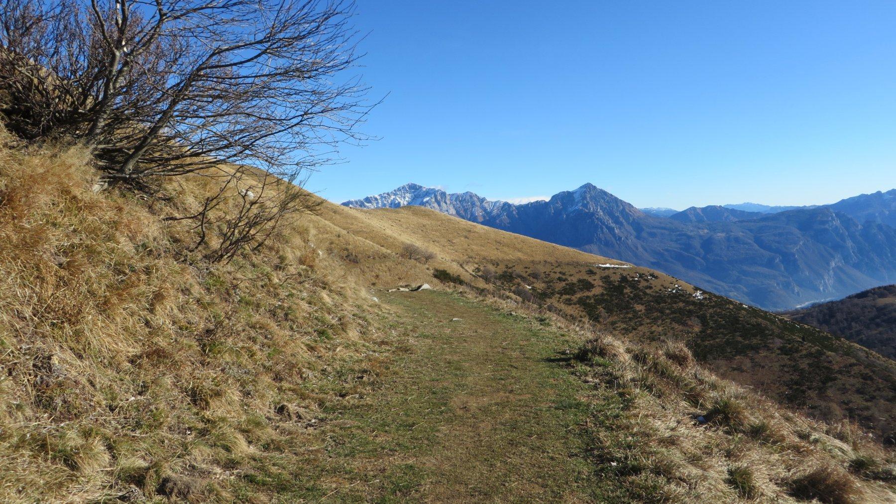 sentiero sotto la cresta fatto scendendo