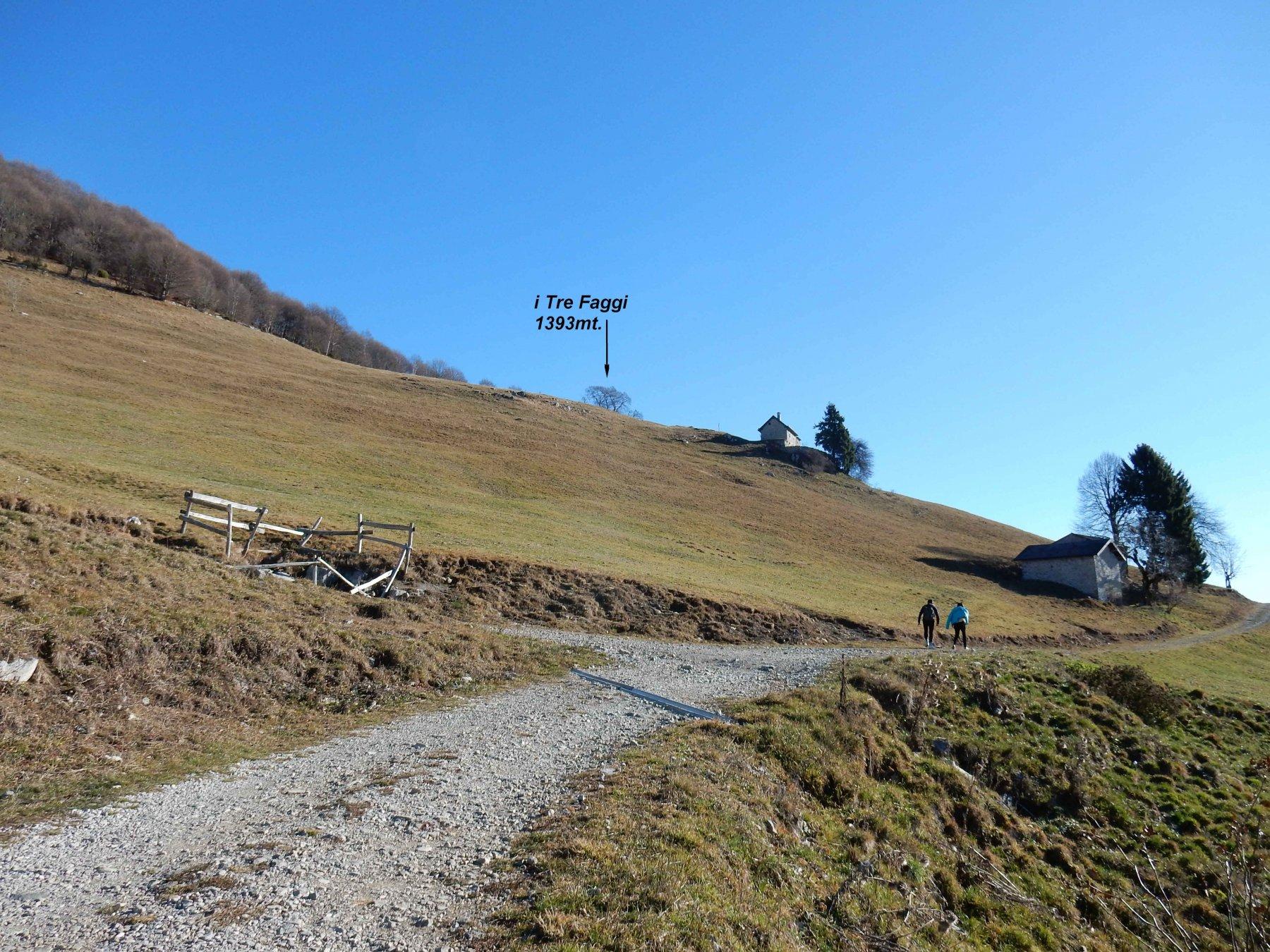 Da Prato Longone vista in alto sui Tre Faggi.