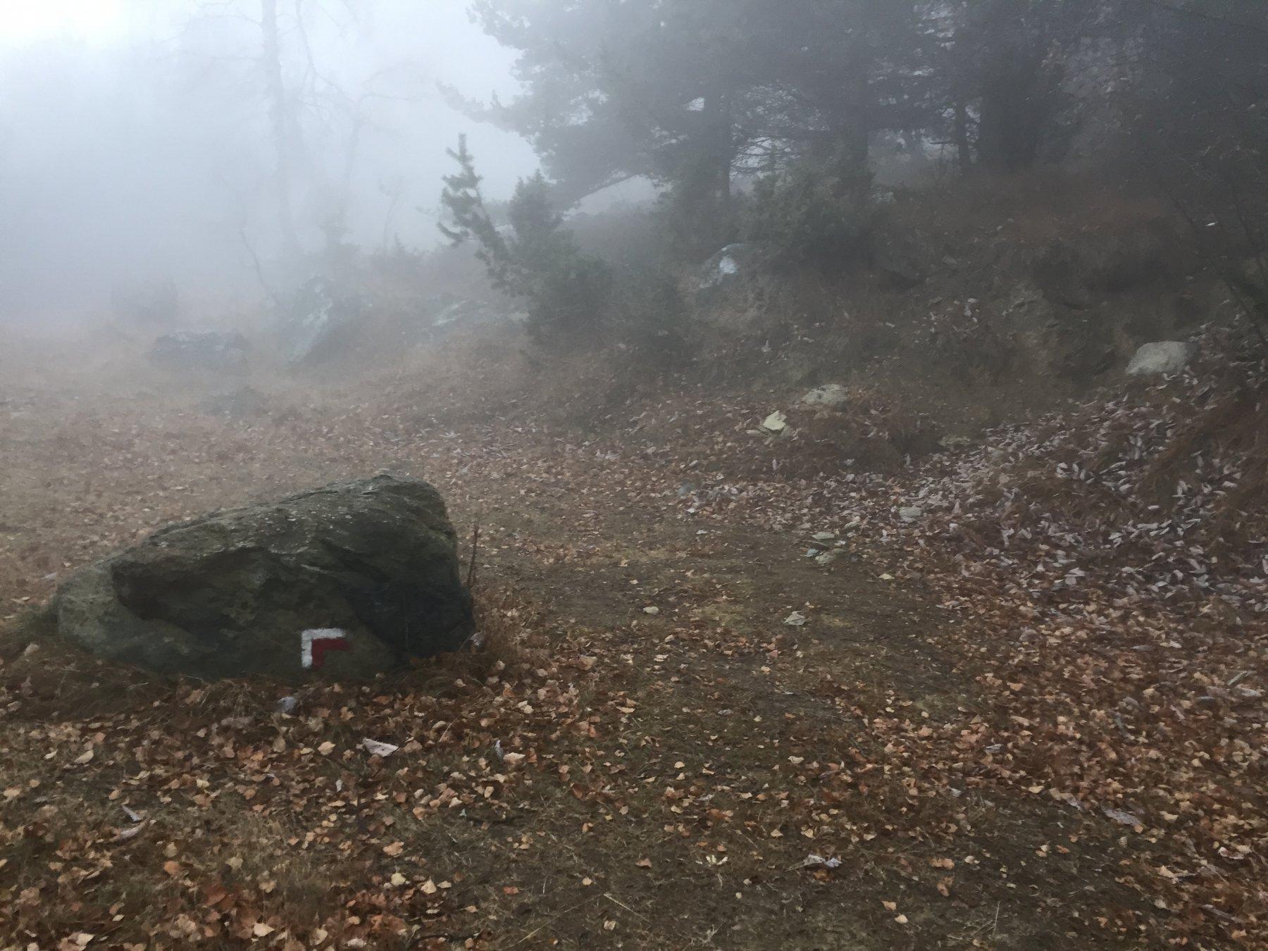 Il segnavia dove parte il sentiero per il colle della bassa