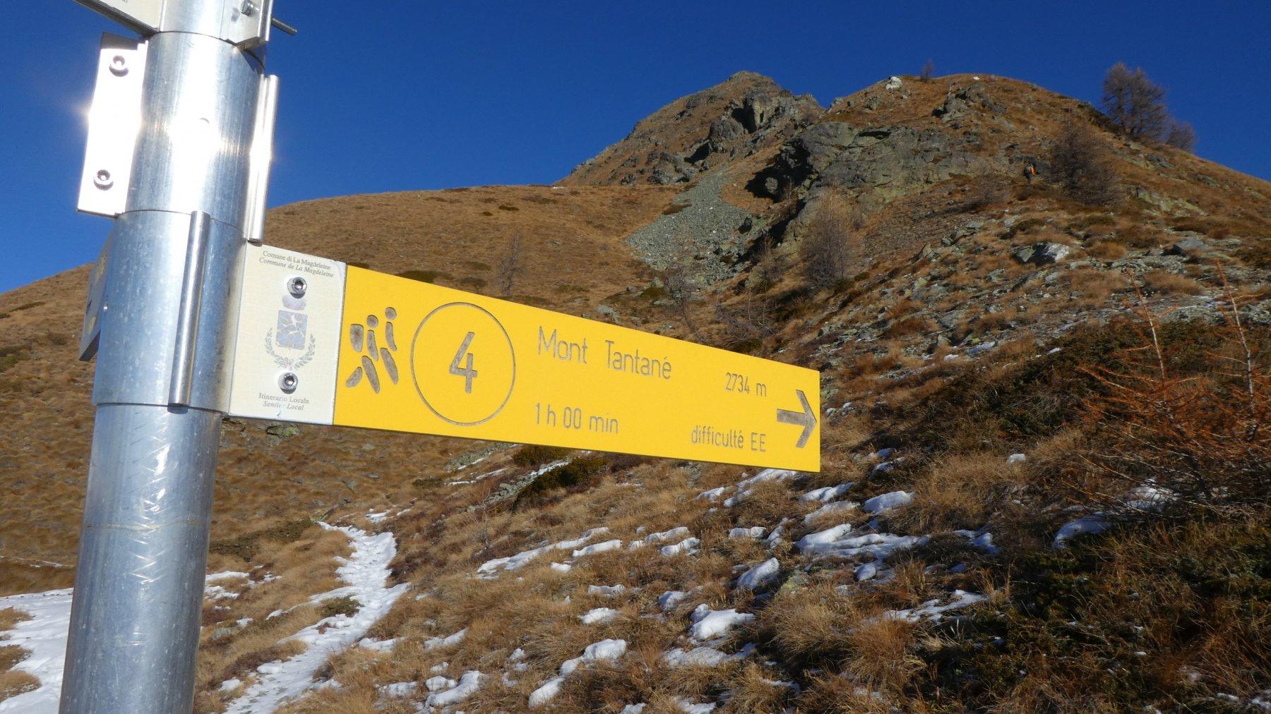 ultimo bivio prima di salire verso la cima, indicazioni ottime e sentiero sempre ottimamente segnalato!