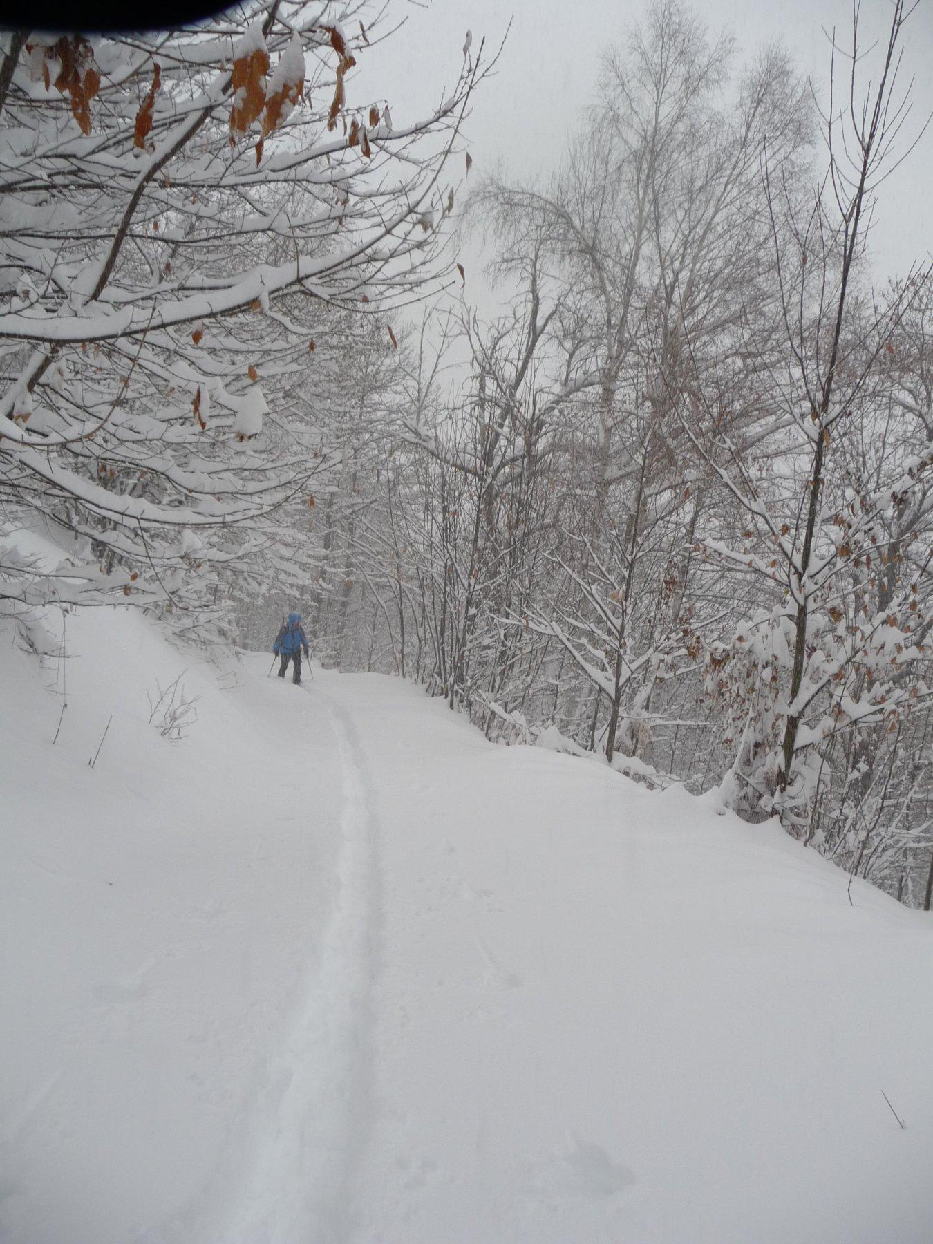 Neve alla partenza