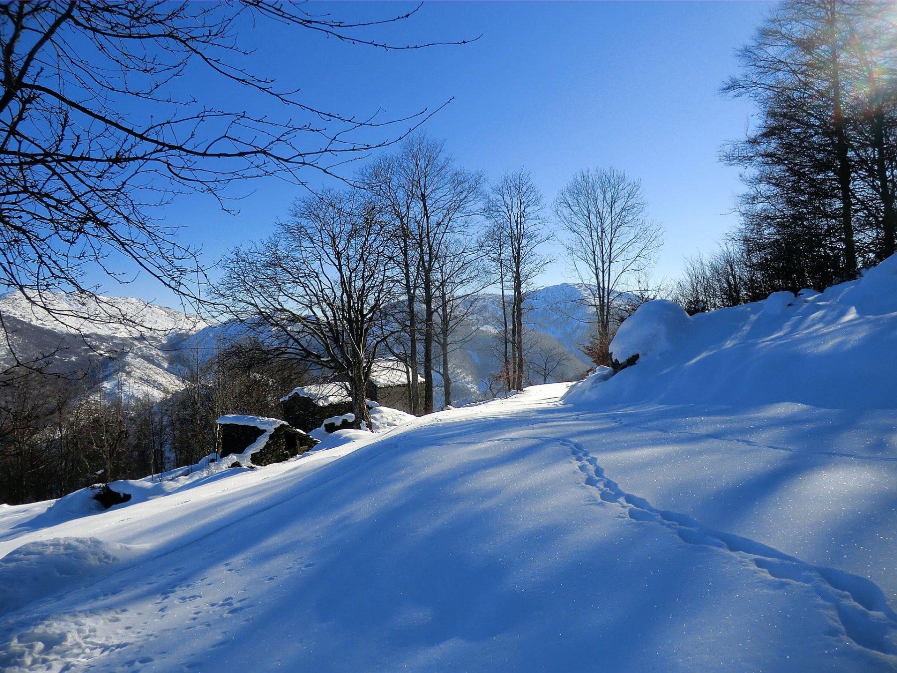 Bel manto nevoso in basso