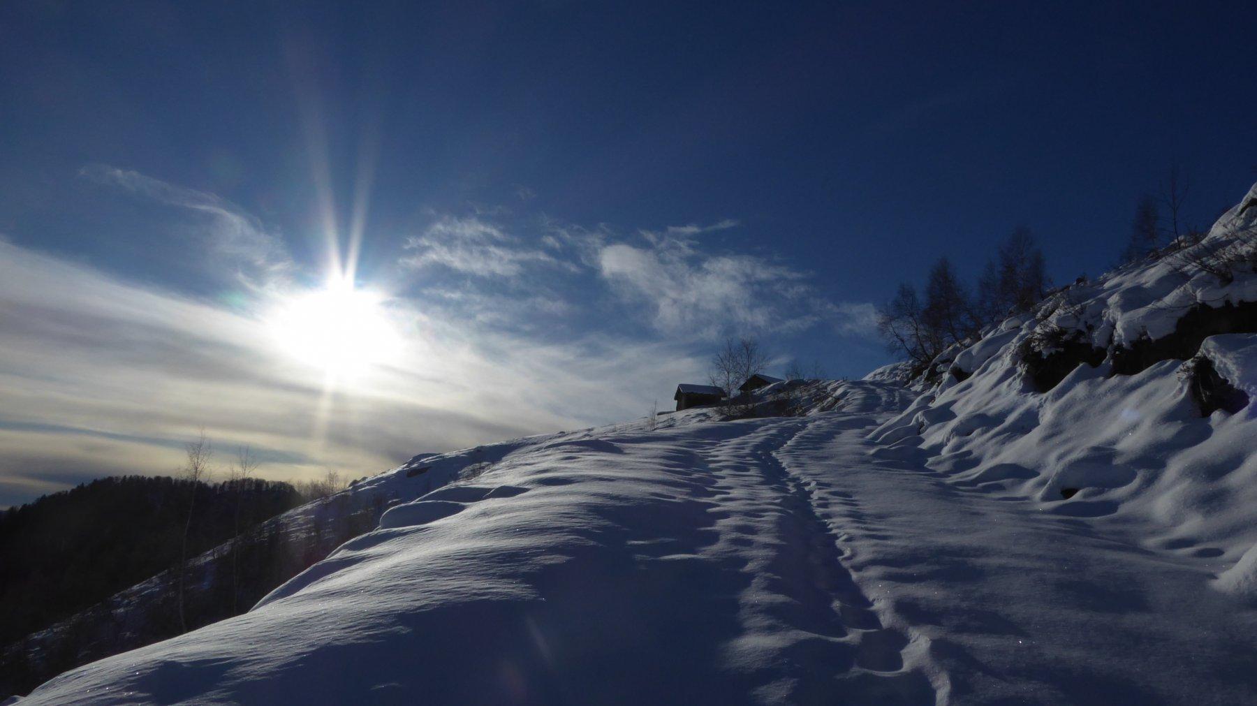 Verso l'Alpe Reis Pollin