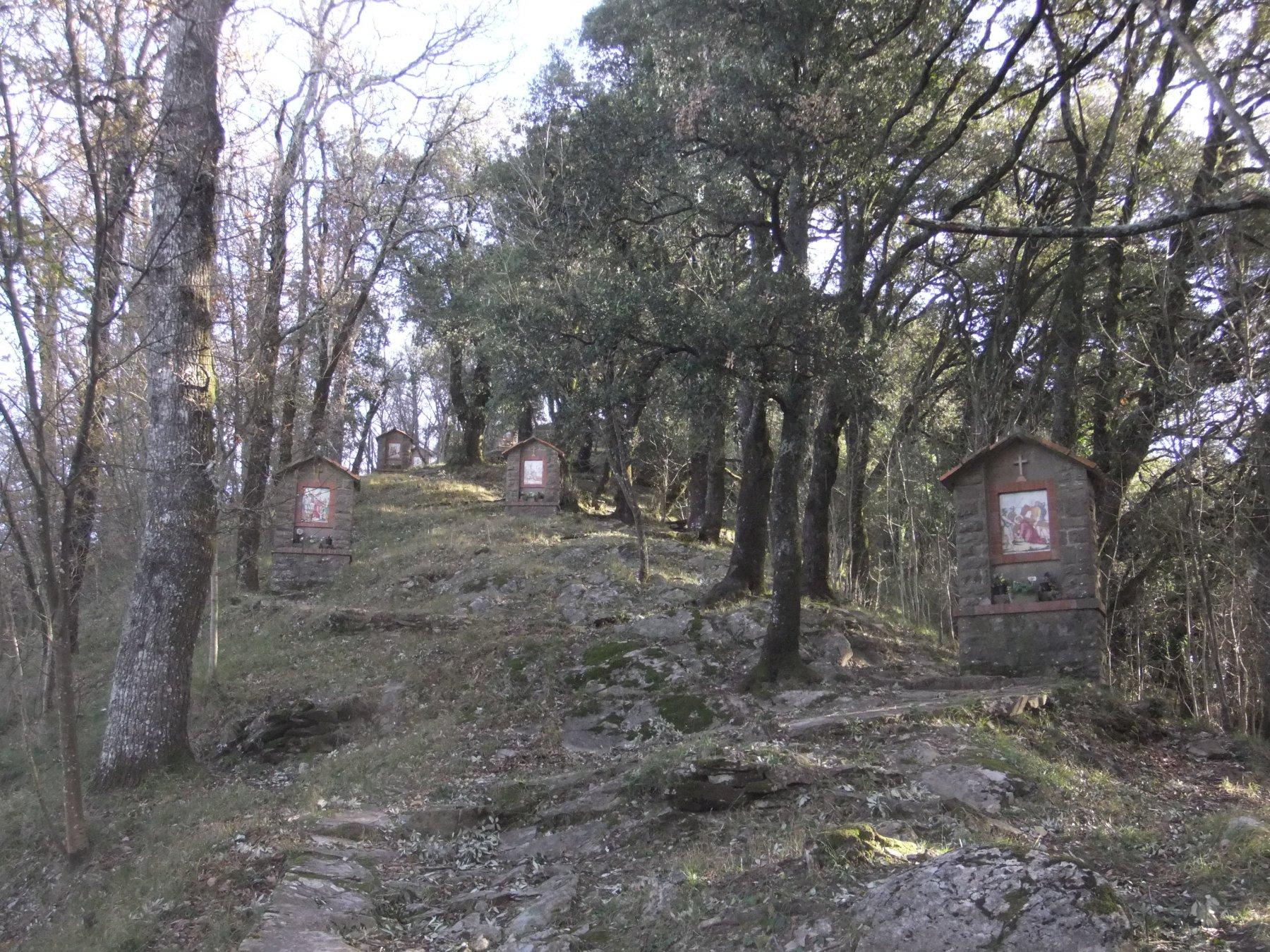 Via Crucis per il Monte Rosa