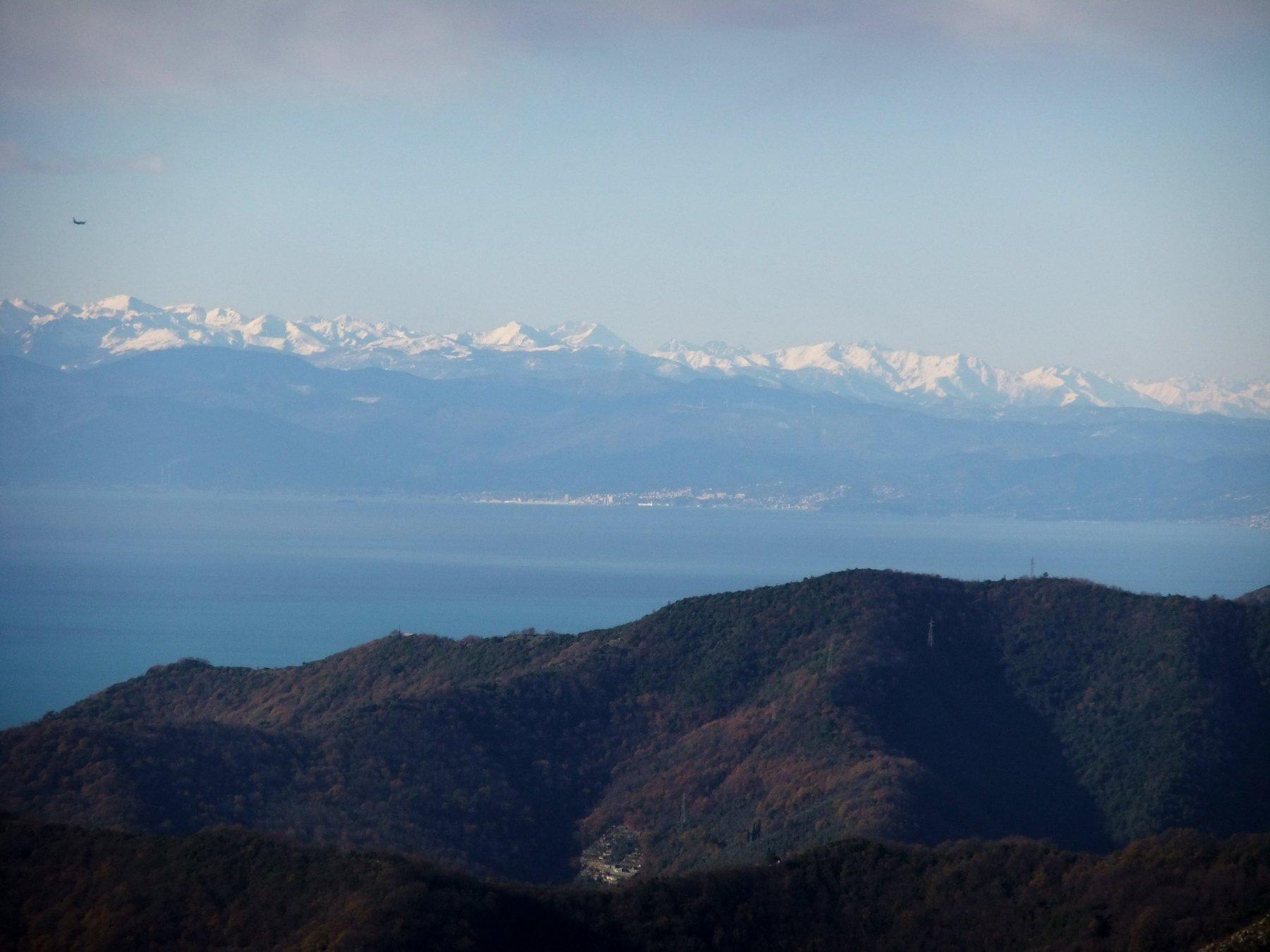 Alpi Marittime dal Monte Pegge