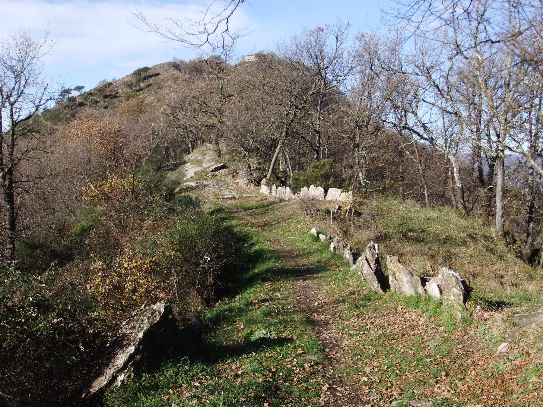 Bel sentiero verso il Monte Pegge