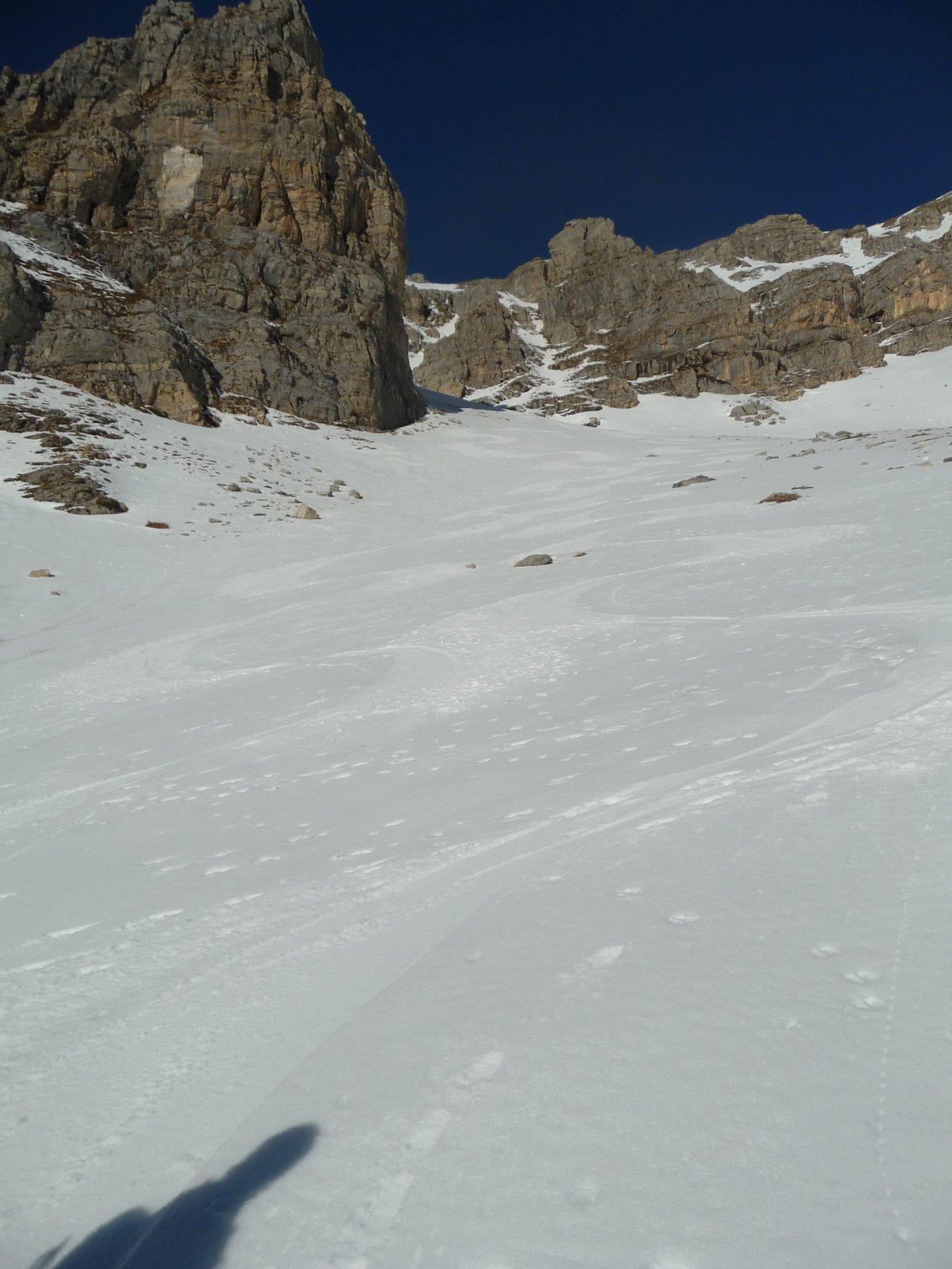 Che Neve 5
