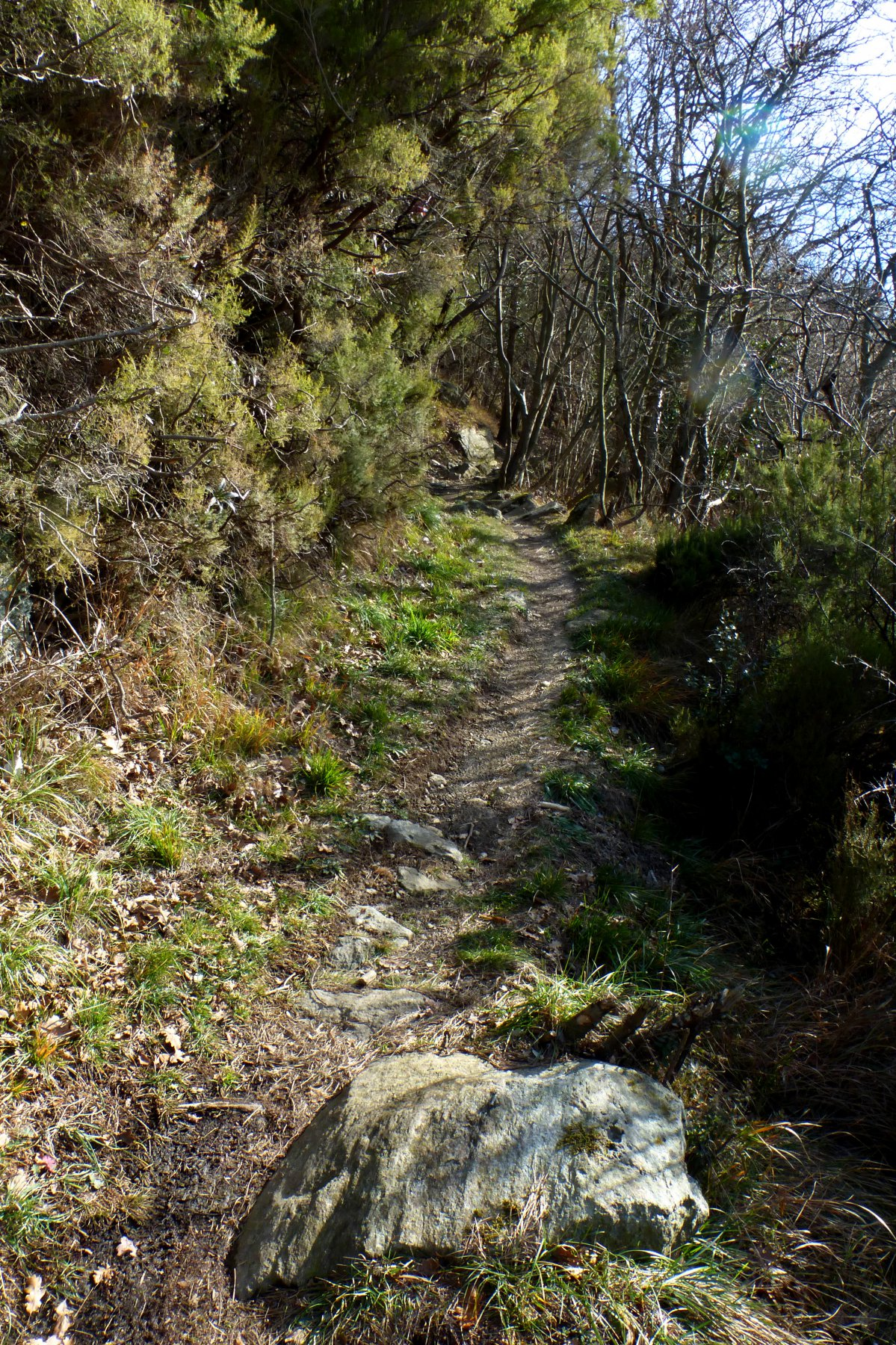 Beigua(Monte) da Faie, giro 2017-12-29