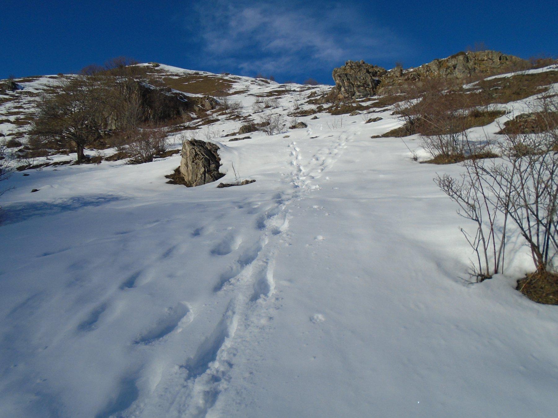 Parte bassa dell'itinerario verso M.Borel; poca ma ancora continua.