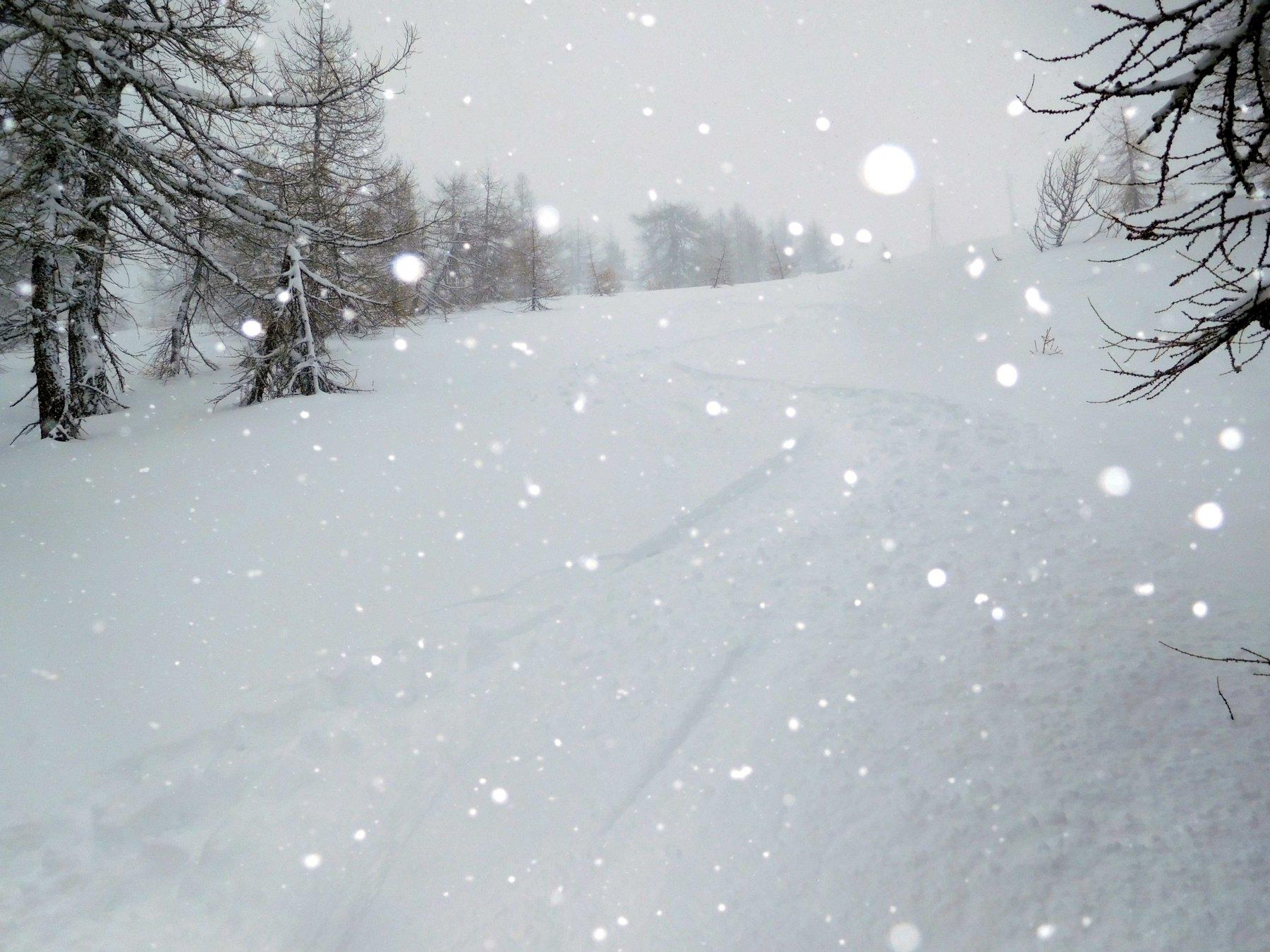 seconda discesa sotto un'intensa nevicata