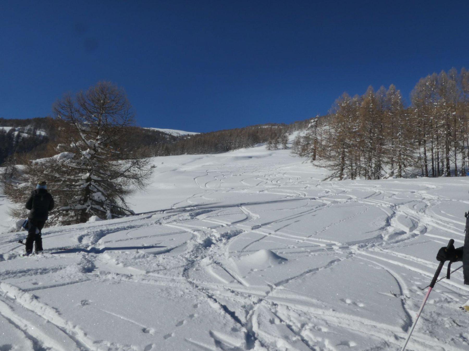 discesa su neve immacolata