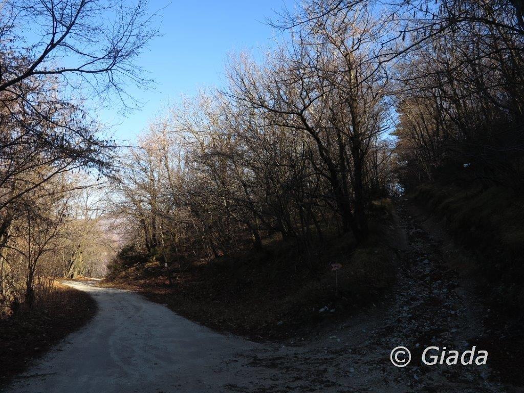 Il bivio sulla sterrata che sale alla Rocca Pian dei Prati