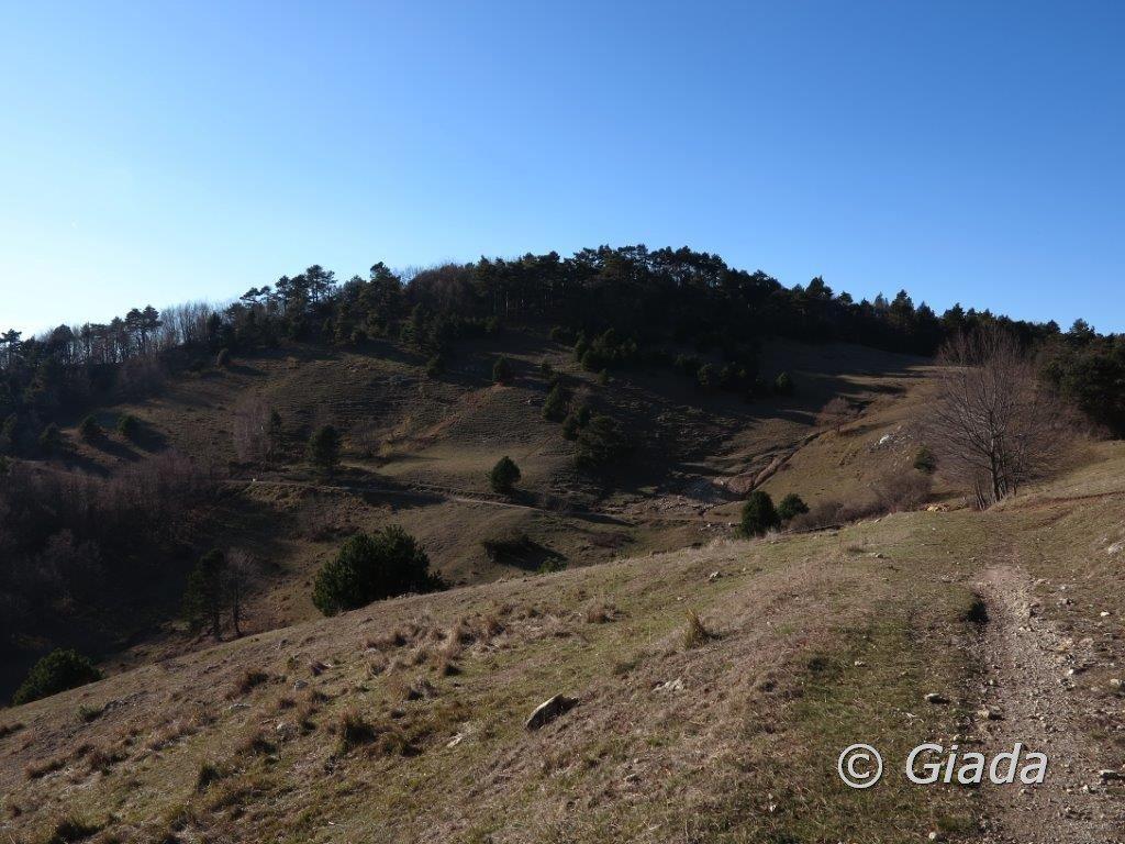 La boscosa Rocca Pian dei Prati