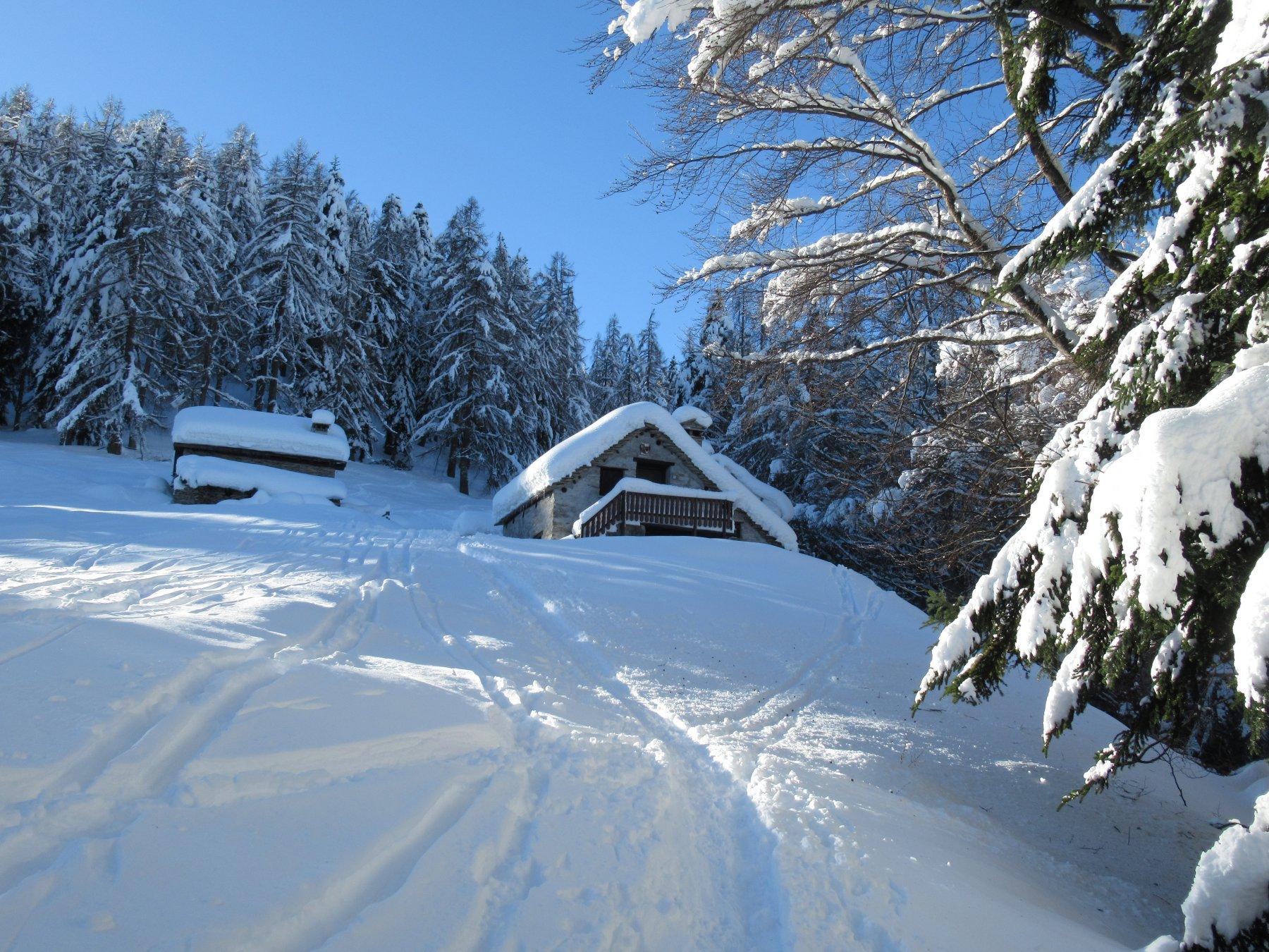 Arrivo all'Alpe Loro