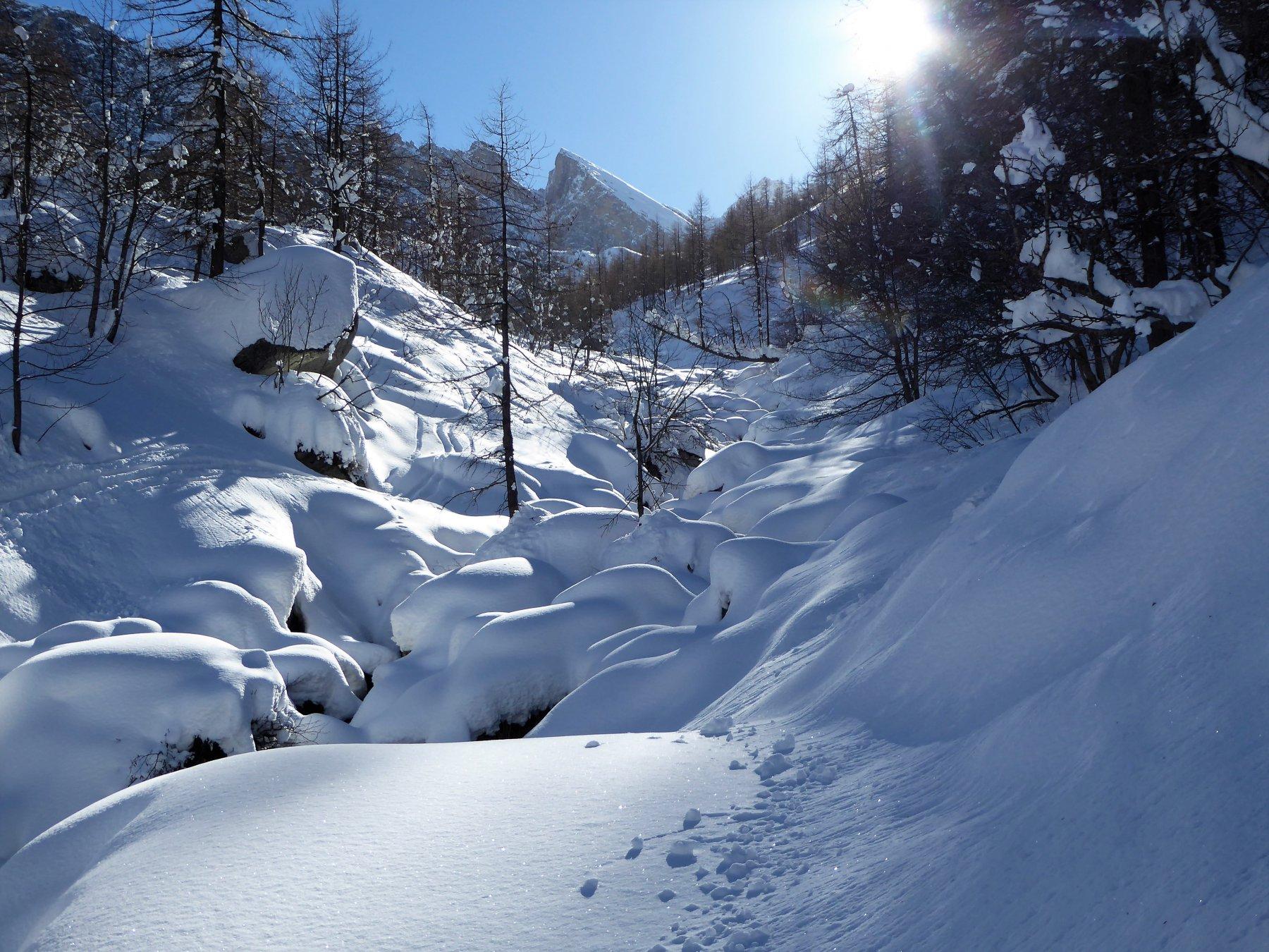 uno sguardo al vallone Camosciere con al fondo il Pic delle Sagneres